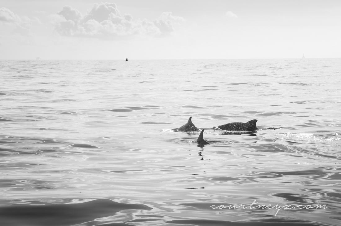 15.08.22_Florida Keys_10on10-9.jpg