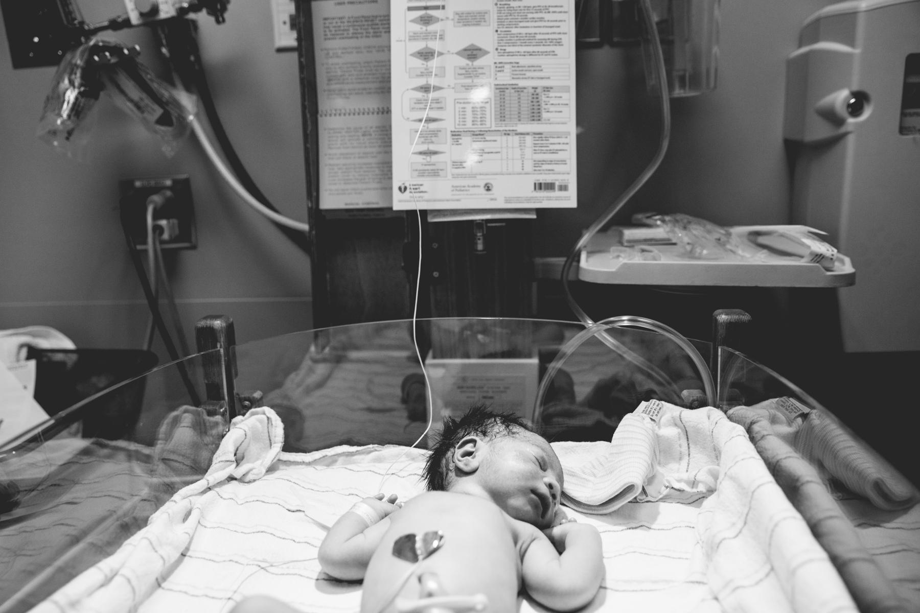 Z adoption story-19.jpg