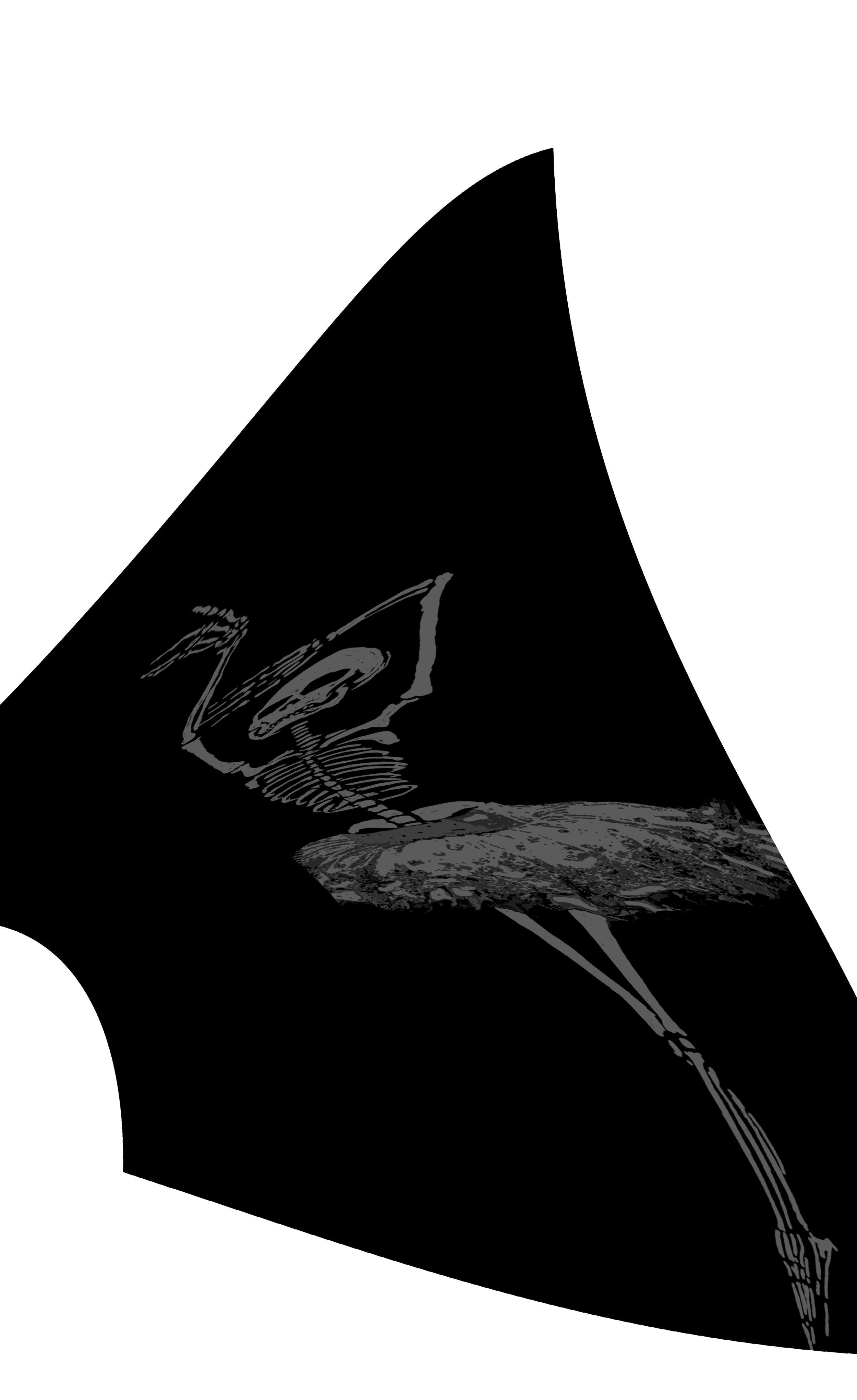 dancer warp 7.jpg