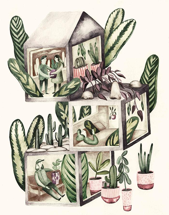 plants_colored_editoral