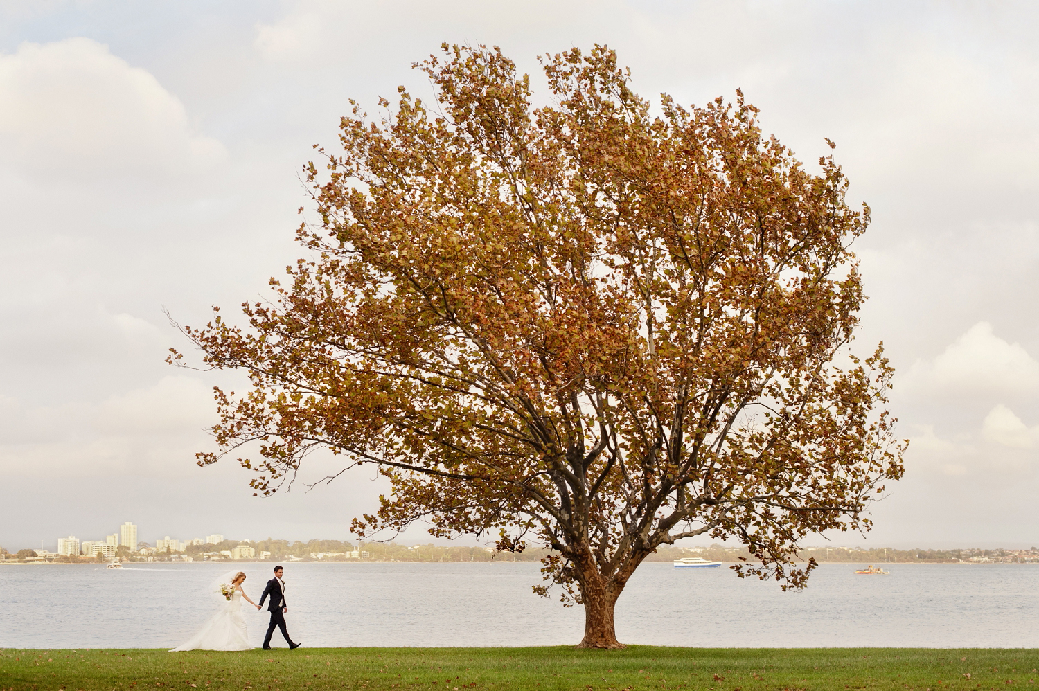matilda bay perth wedding photos with autumn tree