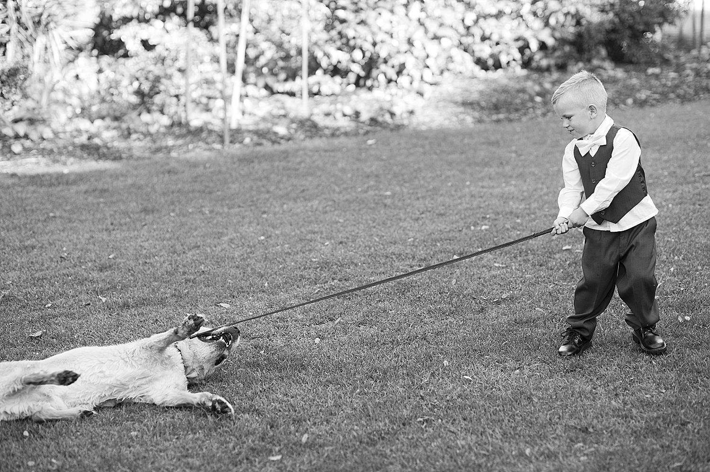 55 wedding dog with pageboy photography perth 065.jpg