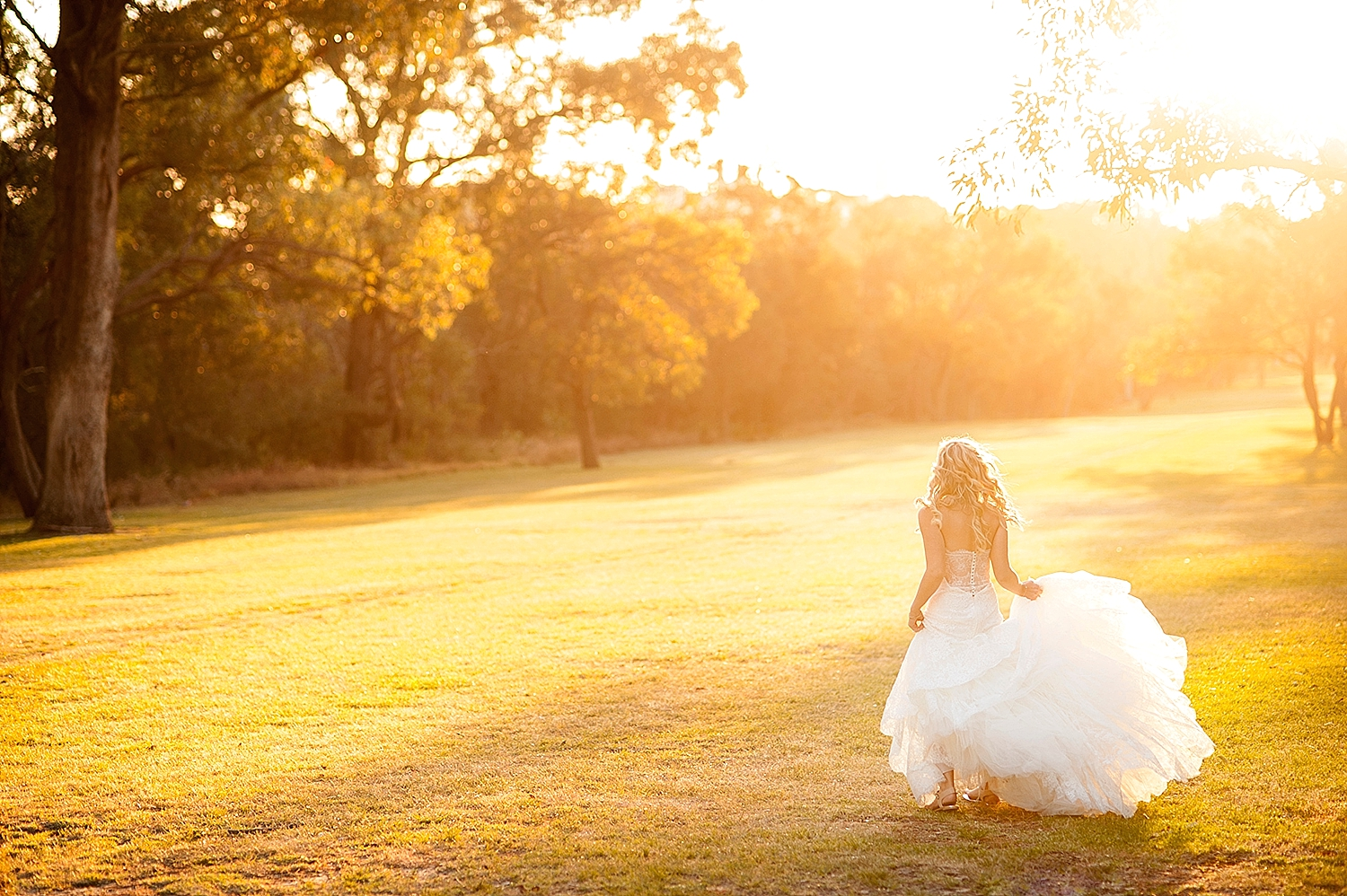 44_bride with pronovias gown in kings park wedding perth.jpg