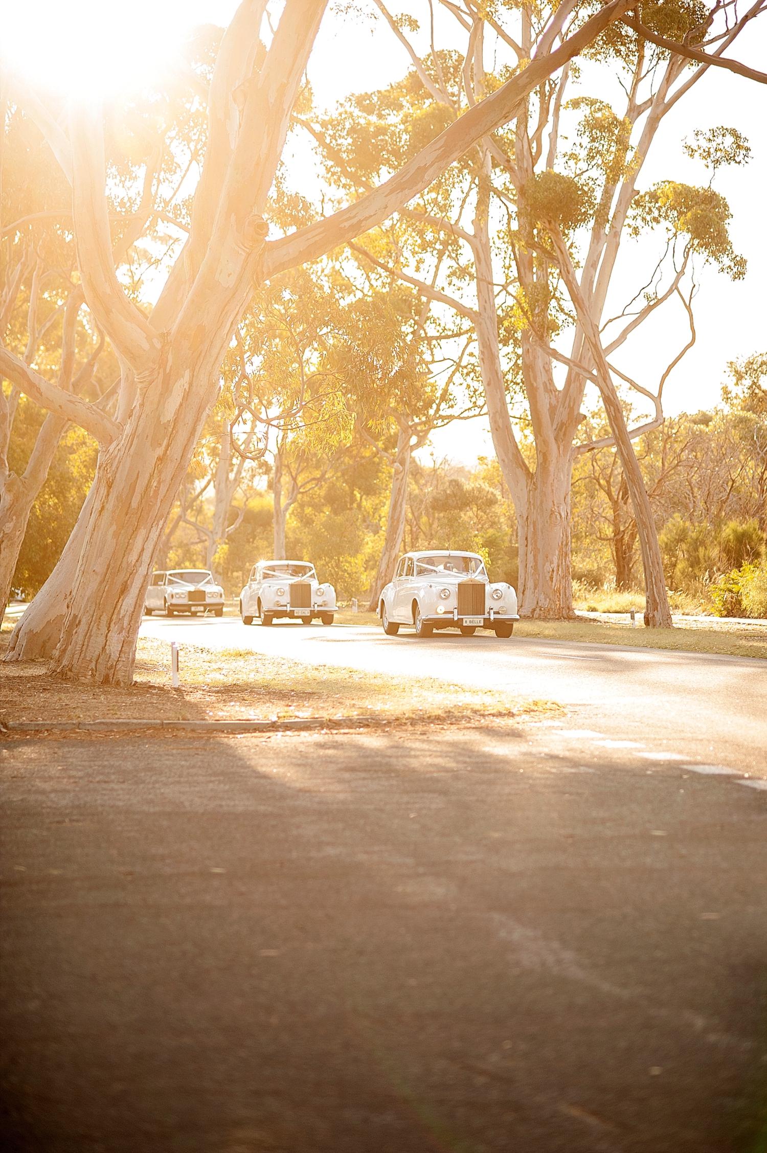 48_fleet of vintage cars wedding perth.jpg