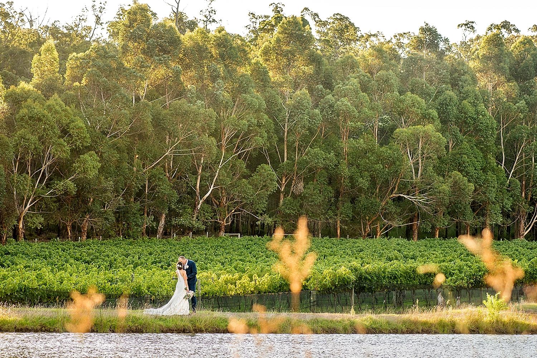 56_millbrook winery wedding perth photos in vineyard .jpg