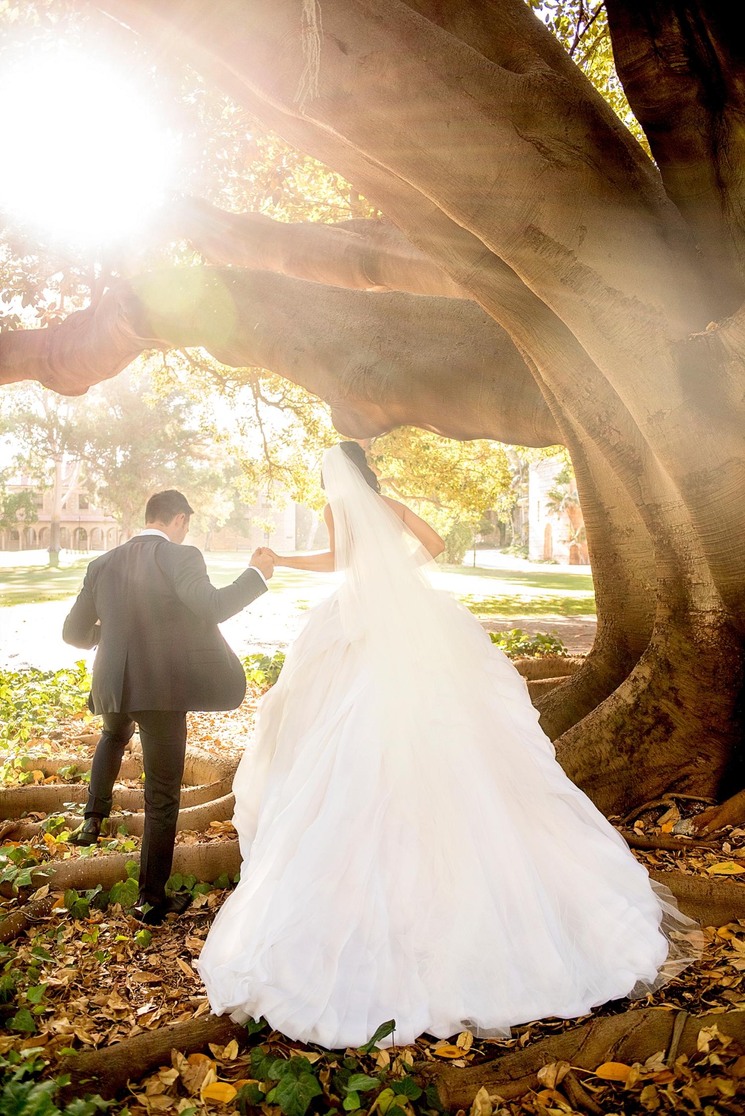 54_wedding photos uwa perth.jpg