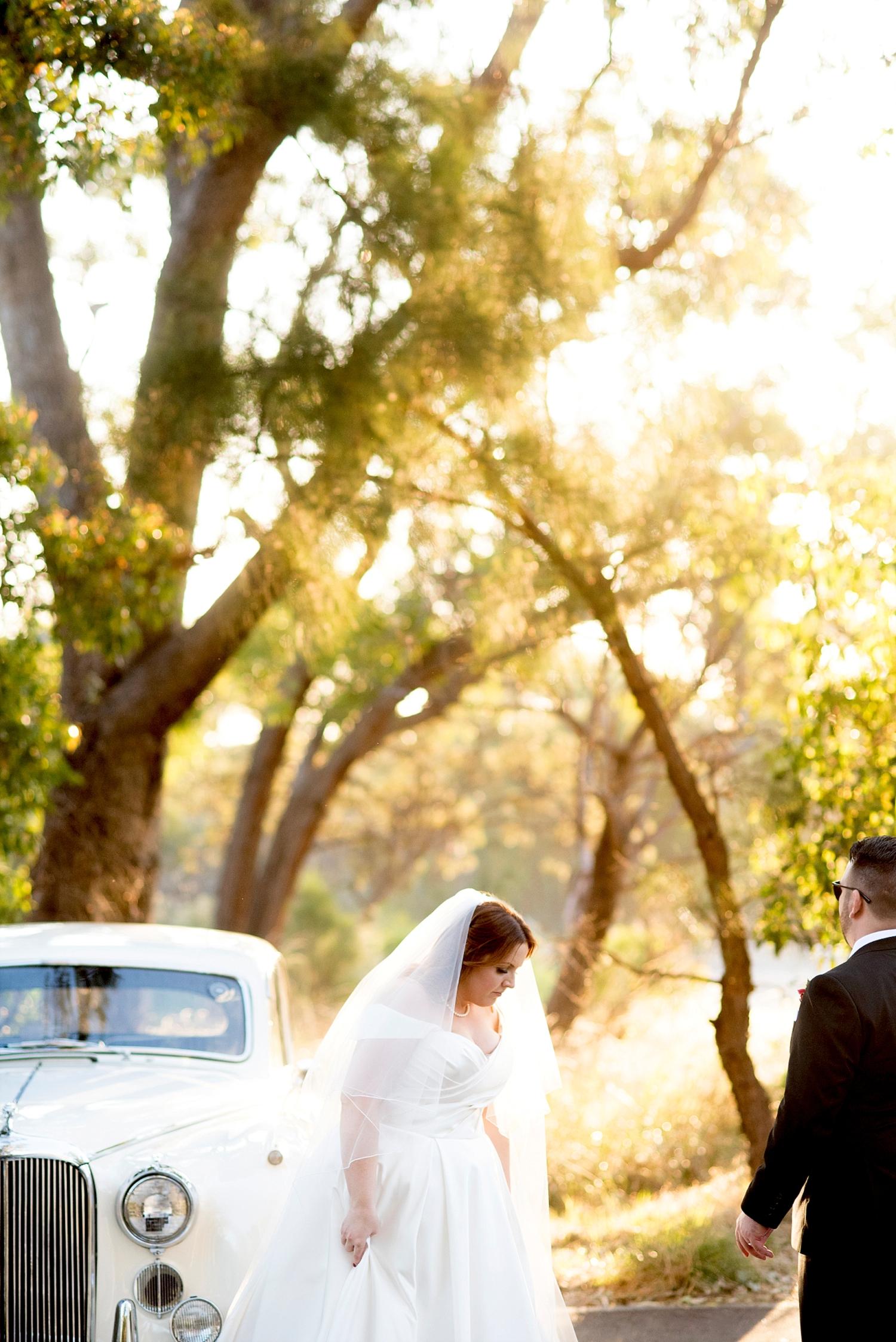 59_perth wedding photographer deray simcoe .jpg