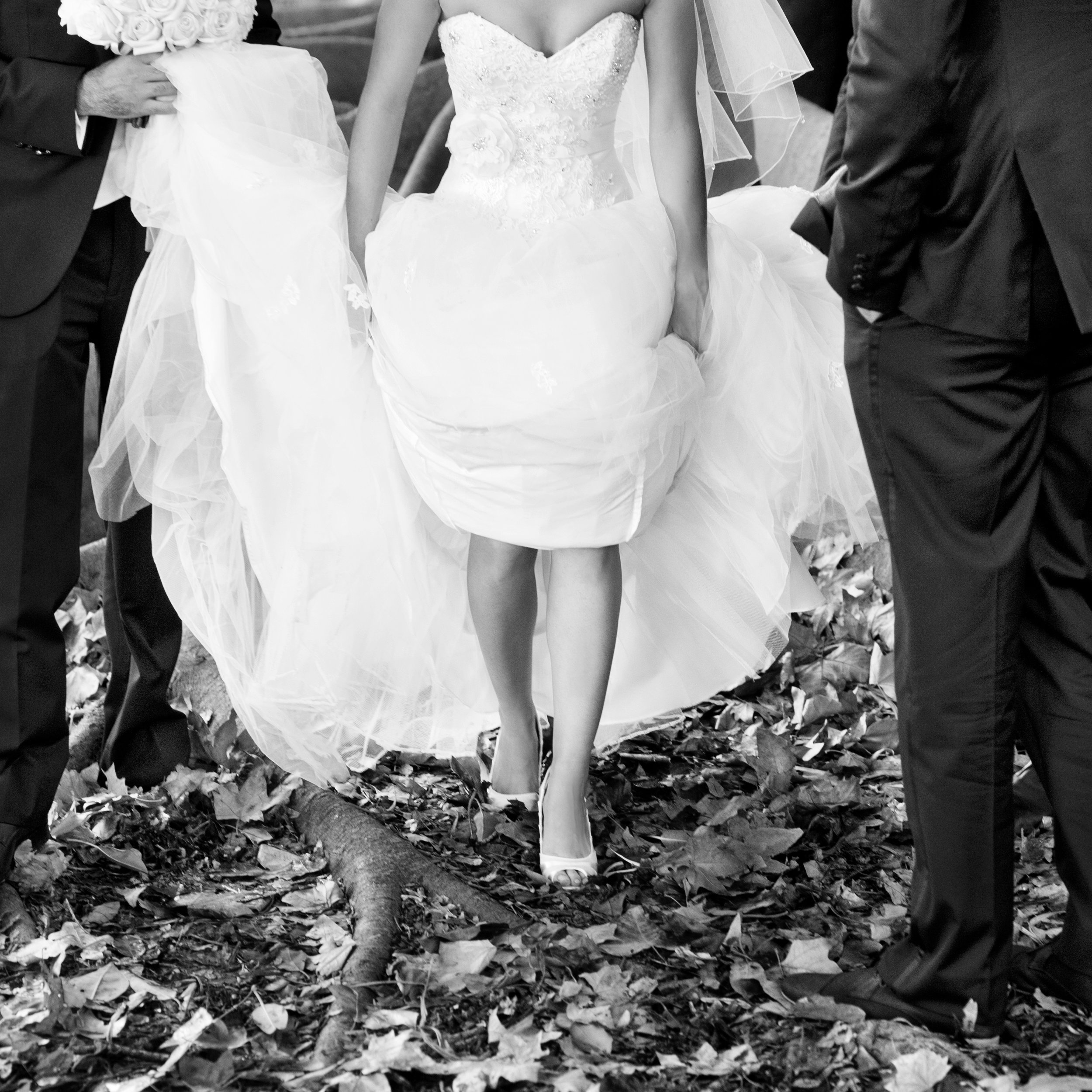 11mounts bay park wedding kings park perth.jpg