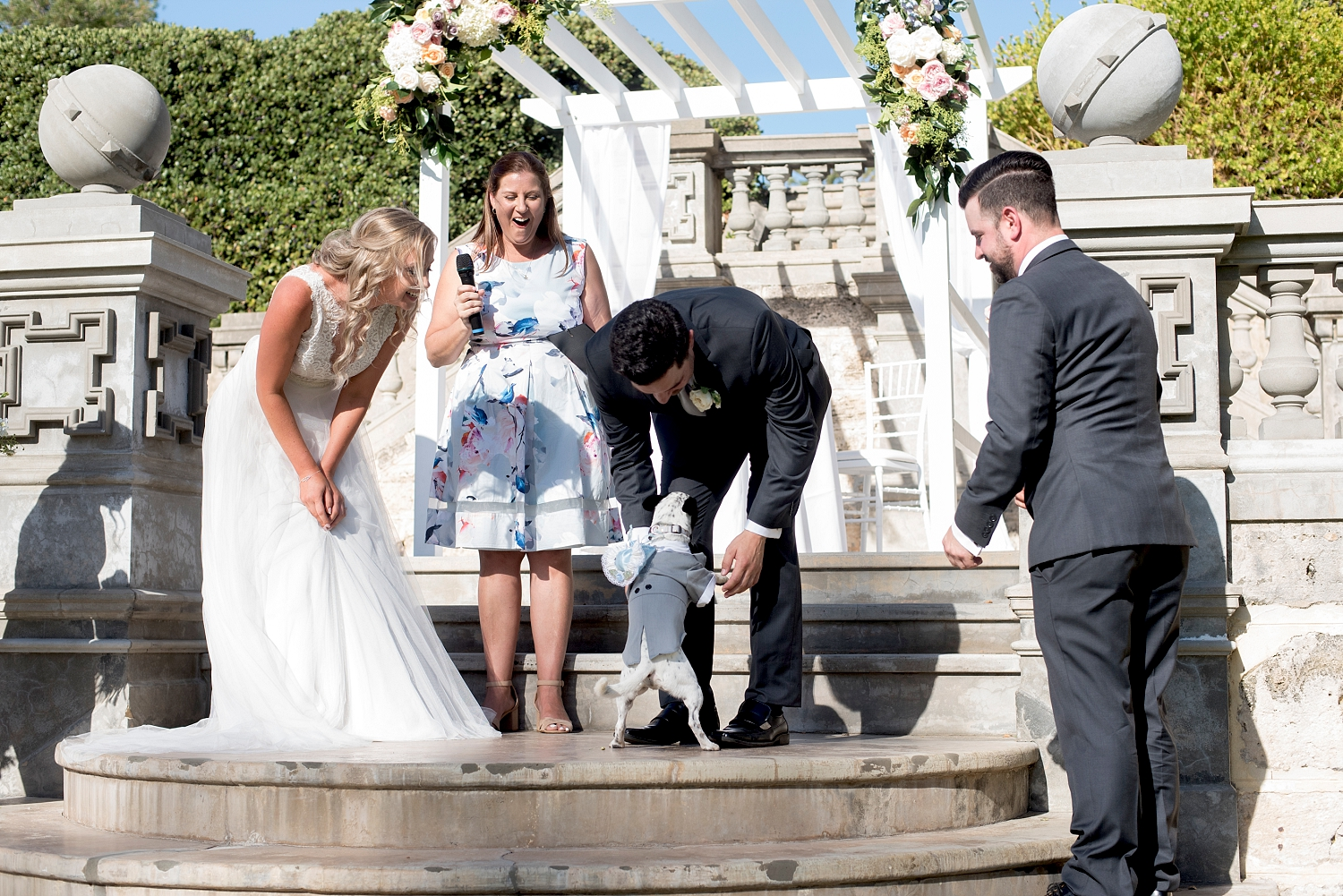 32_cottesloe civic centre wedding perth with dog as ring bearer.jpg