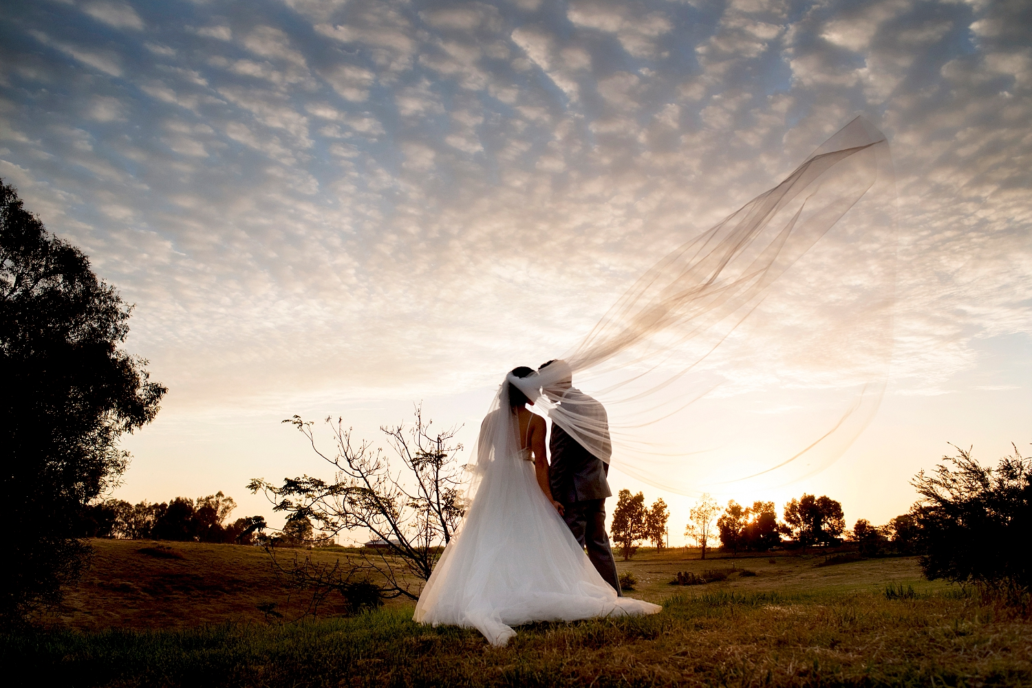 43_caversham house sunset wedding perth.jpg