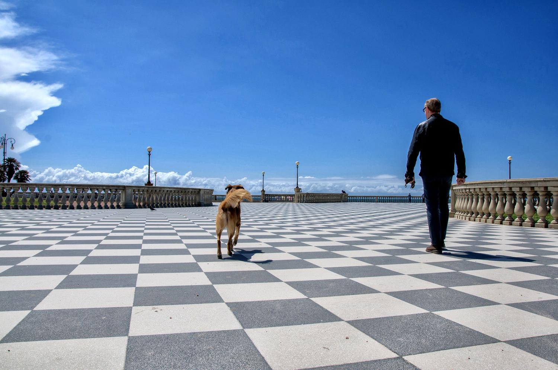 Livorno - www.thefxworks.co.uk1.JPG