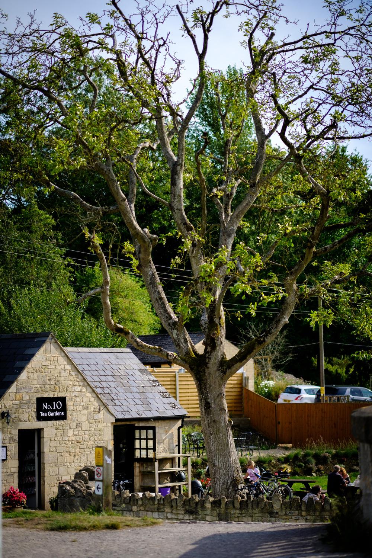 Bradford on Avon Wiltshire - thefxworks30.JPG