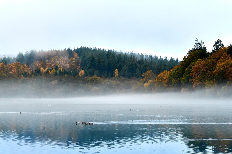 The lake at Sheerwater