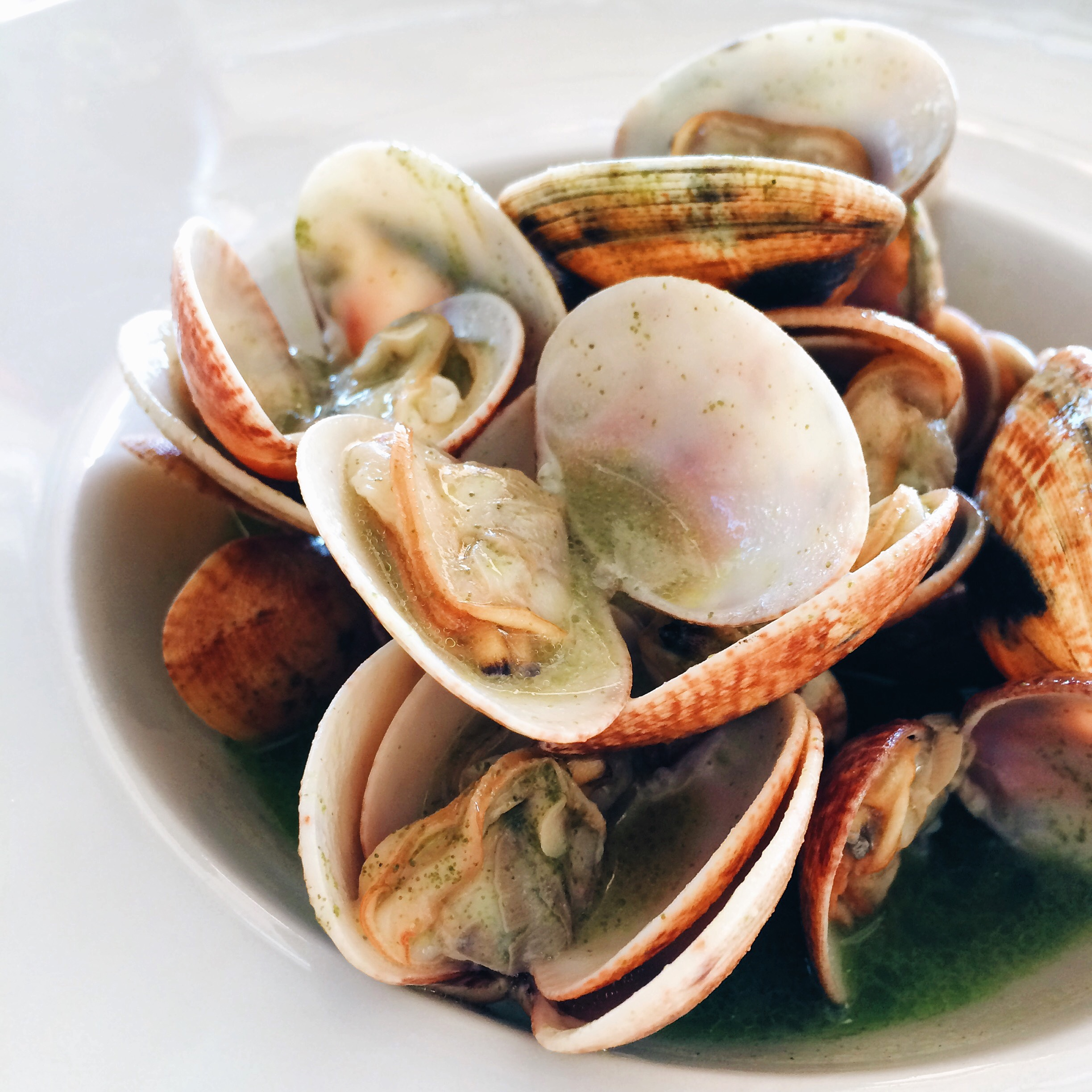 Clams at Bahia Mediterraneo in Palma de Mallorca