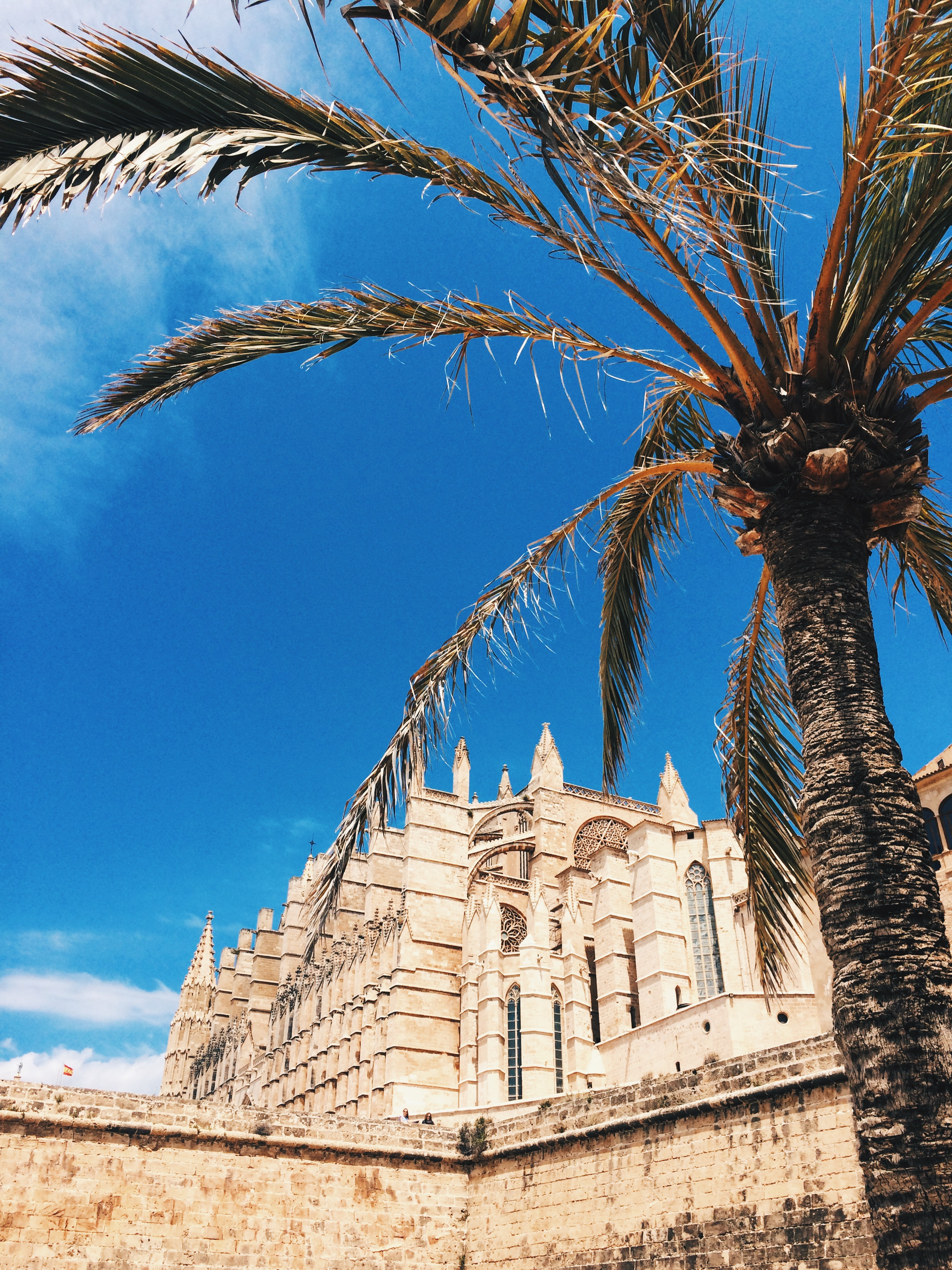 The cathedral in Palma de Mallorca
