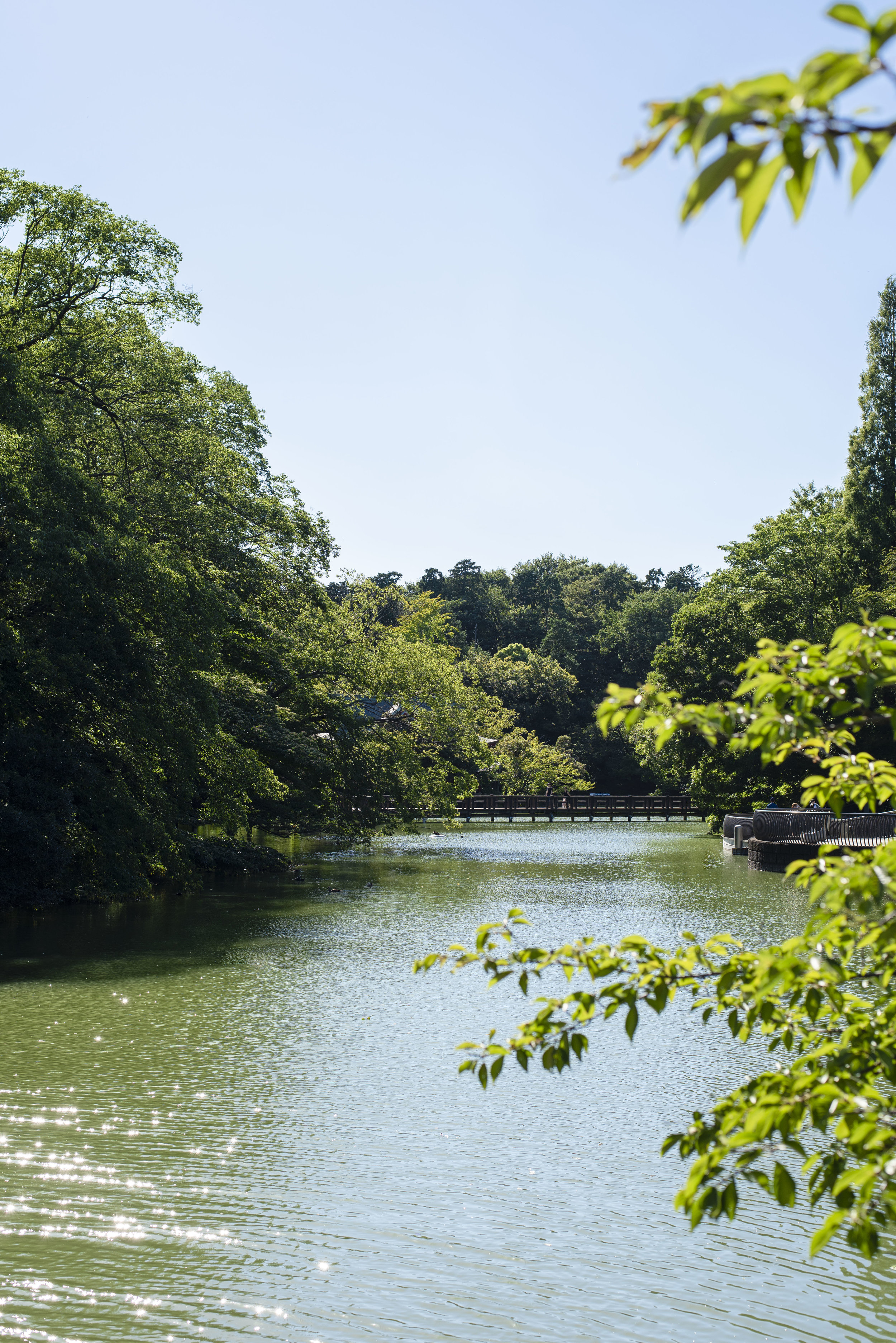 Inokashira Park, Kichijoji, Tokyo