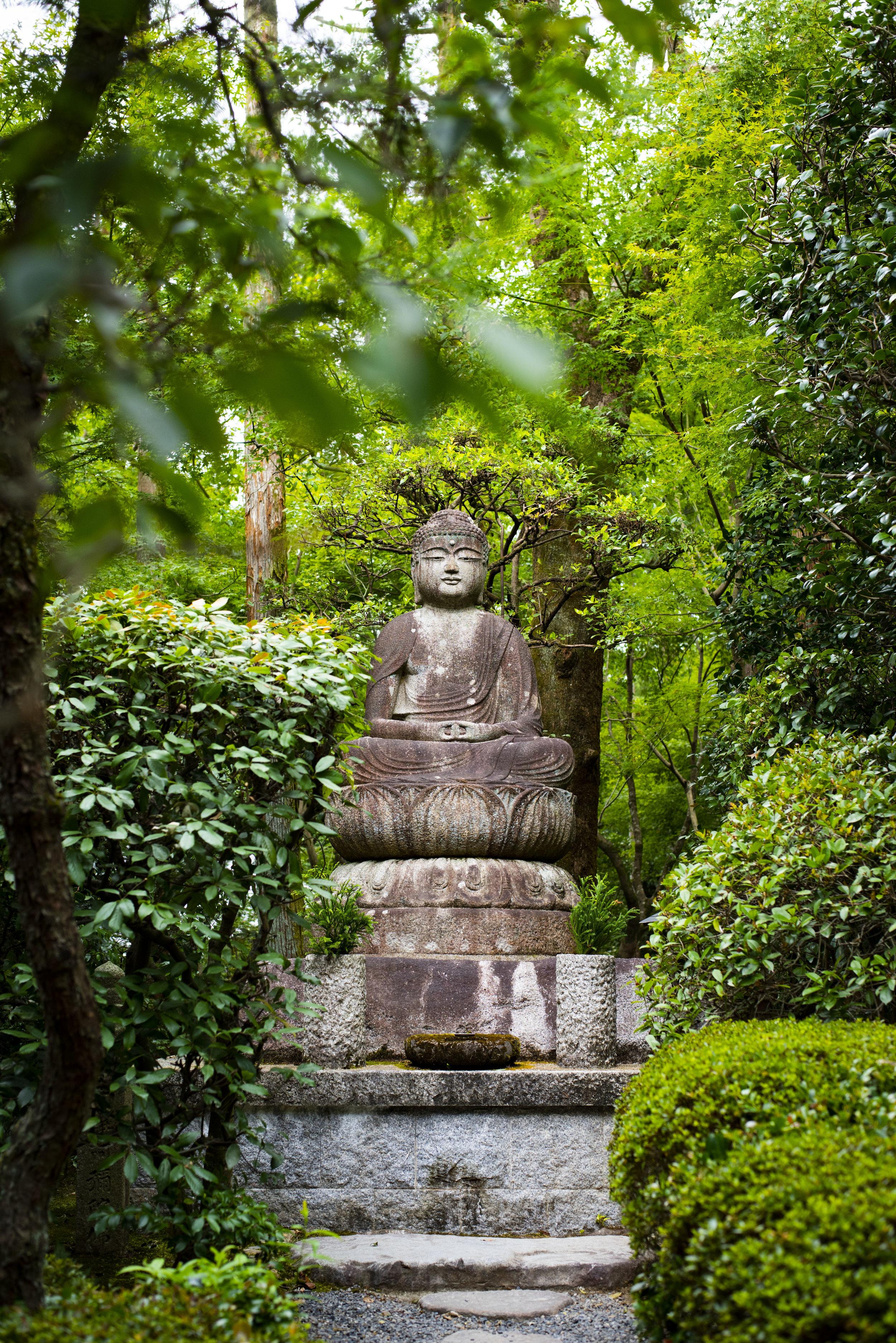 Ryoan-Ji Temple in Kyoto