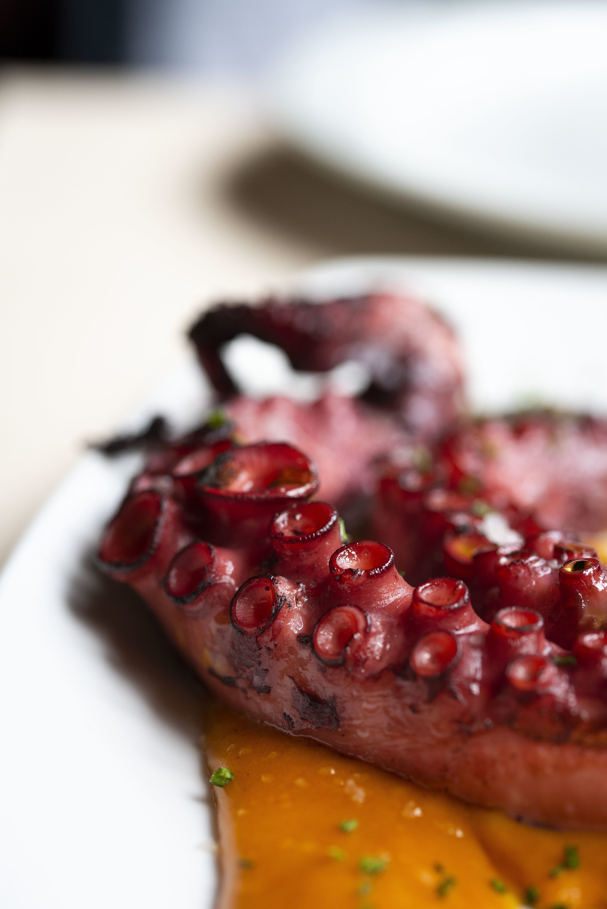Grilled octopus at Calabrasa, Barcelona. Photo © Barcelona Food Experience.