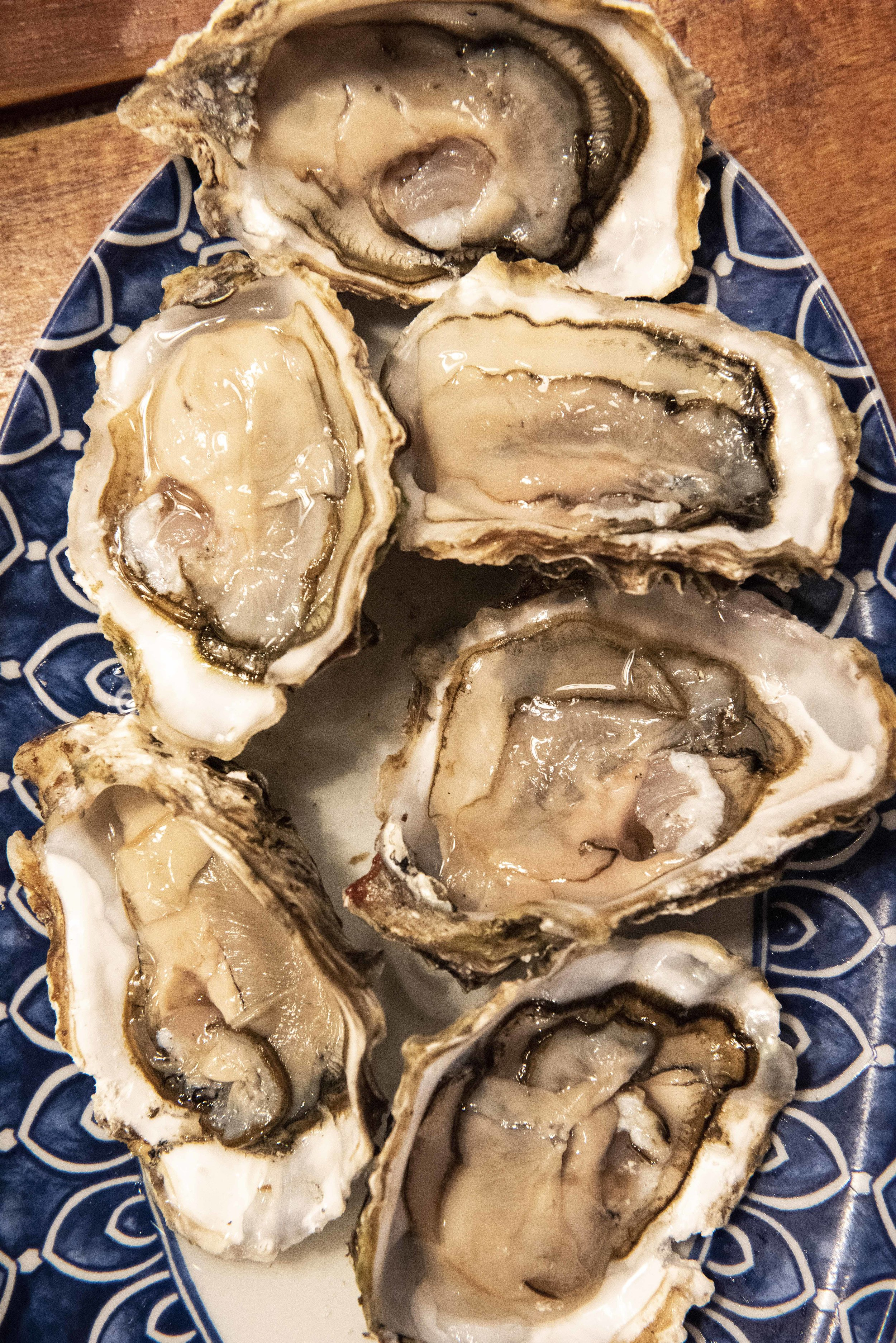 Oysters at Bodega La Puntual. Photo © Barcelona Food Experience.