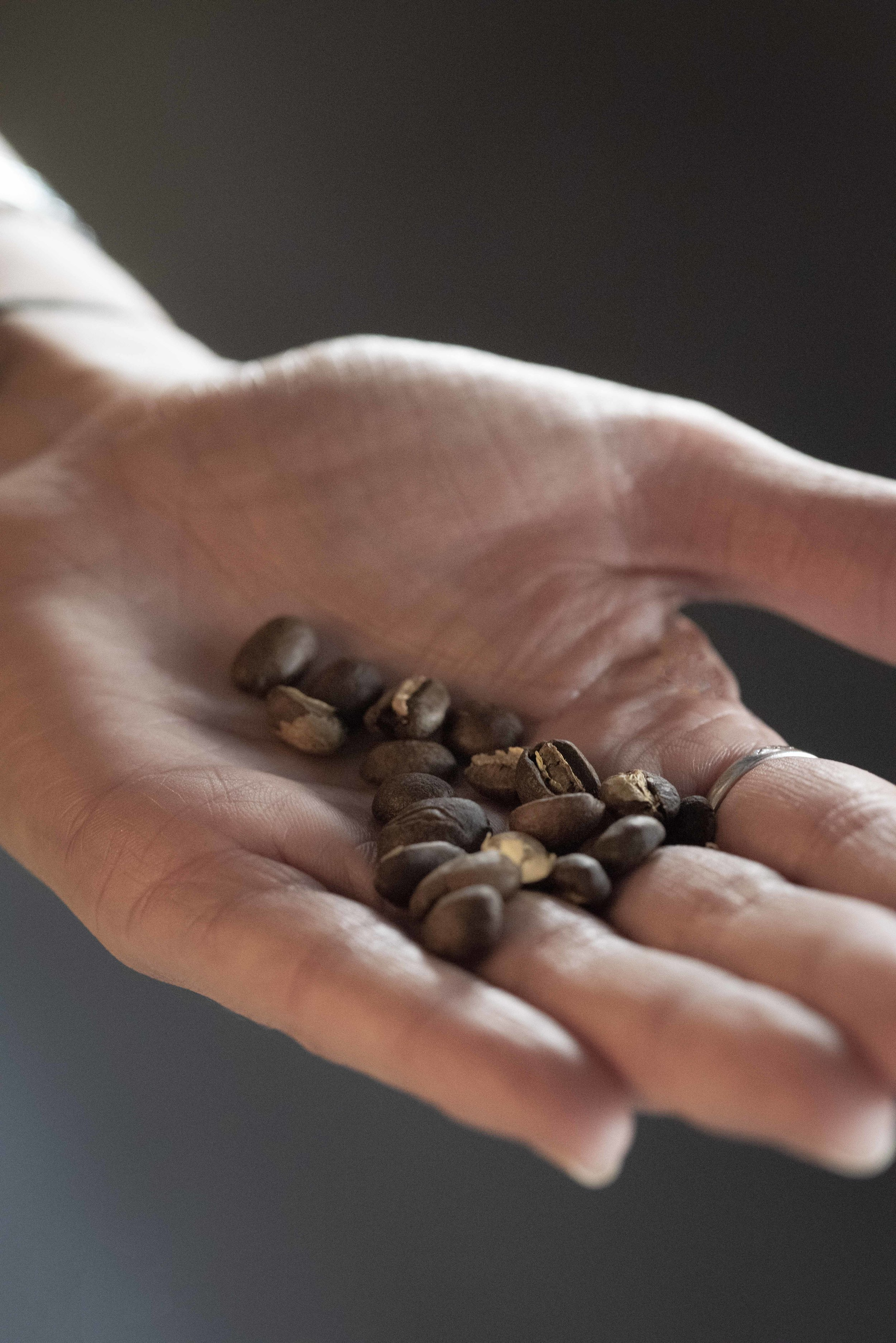 Toasted coffee beans for 80plus specialty coffee. Photo © Barcelona Food Experience.
