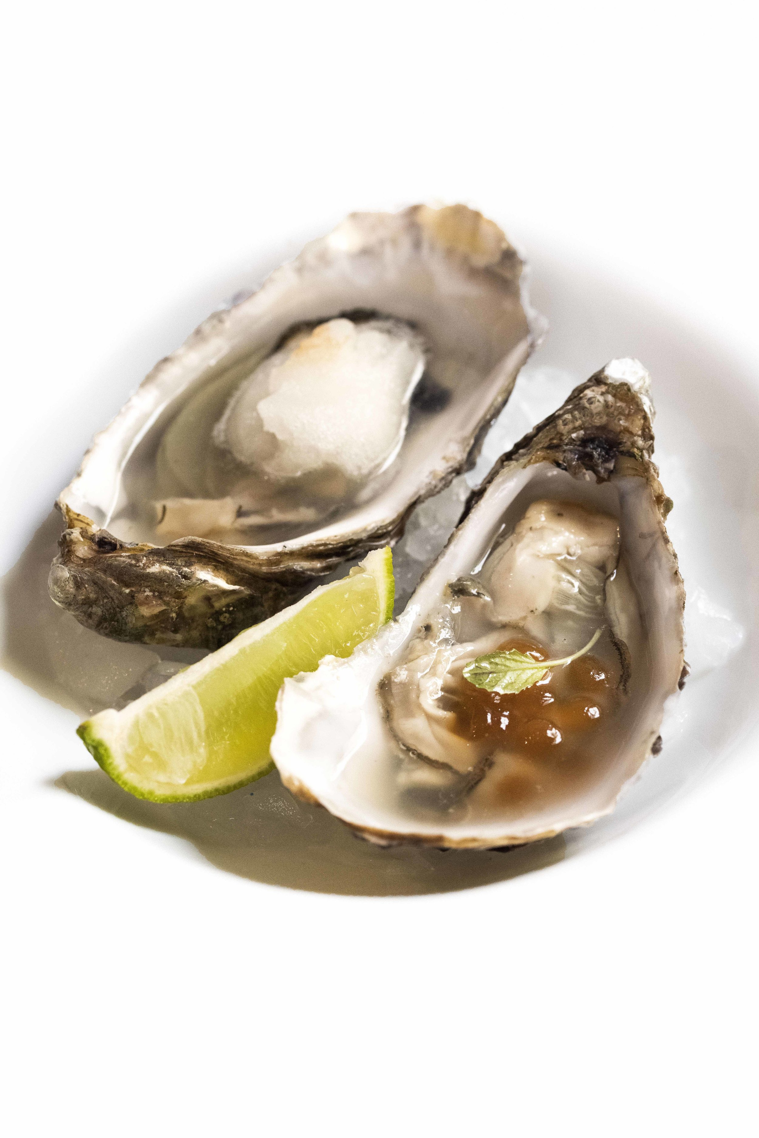 Oysters at Fastuc Restaurant, Barcelona. Photo © Barcelona Food Experience.