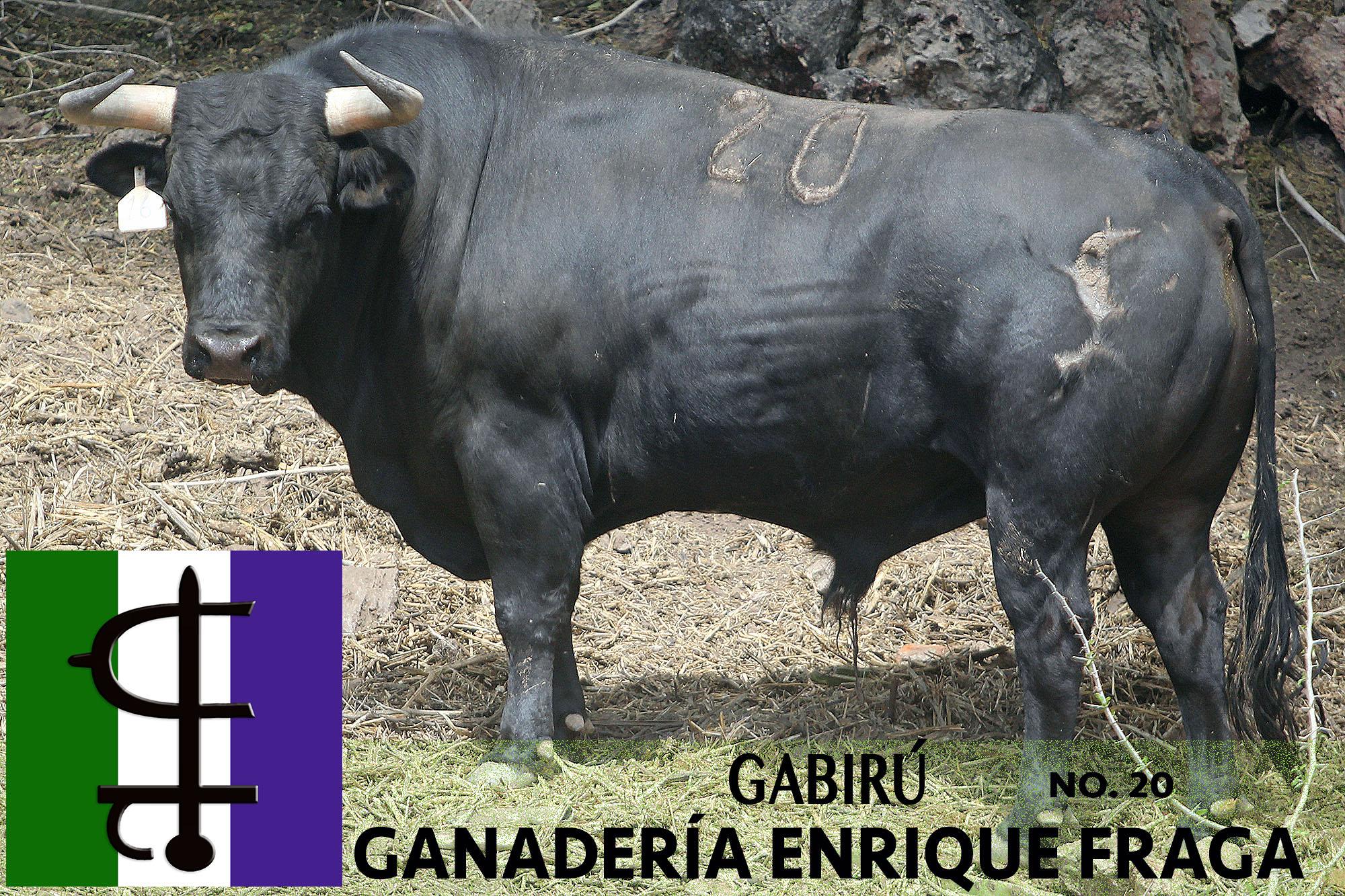 # 20 GABIRÚ.jpg