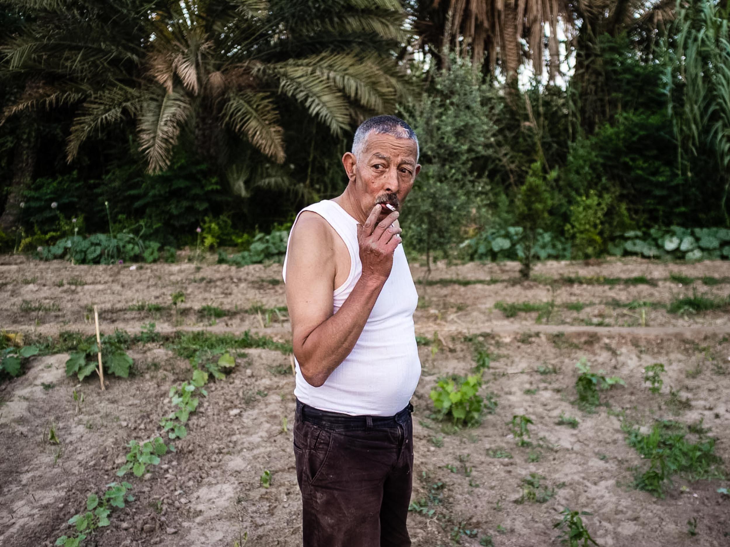 Gabes. Oasis de Chenini. 2016. L'agriculteur Ali Ahmed sur sa parcelle familiale. Il a hérité de son père de 3000 m2 de terrain. Ali a toujours travaillé dans l'agriculture parallèlement à son activité dans l'éducation nationale. Avec le soutien de l'association de sauvegarde de l'oasis de Chenini, l'agriculteur utilise des méthodes traditionnelles, biologiques et écologiques pour cultiver sa parcelle.