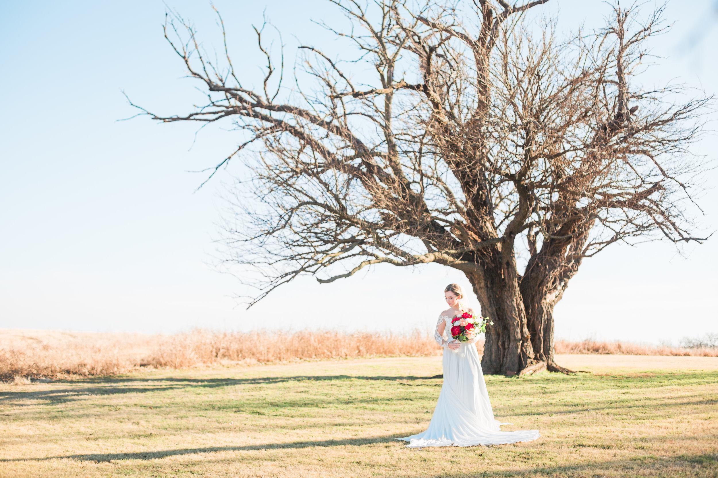 Hannah Bridal Tree-1069.jpg