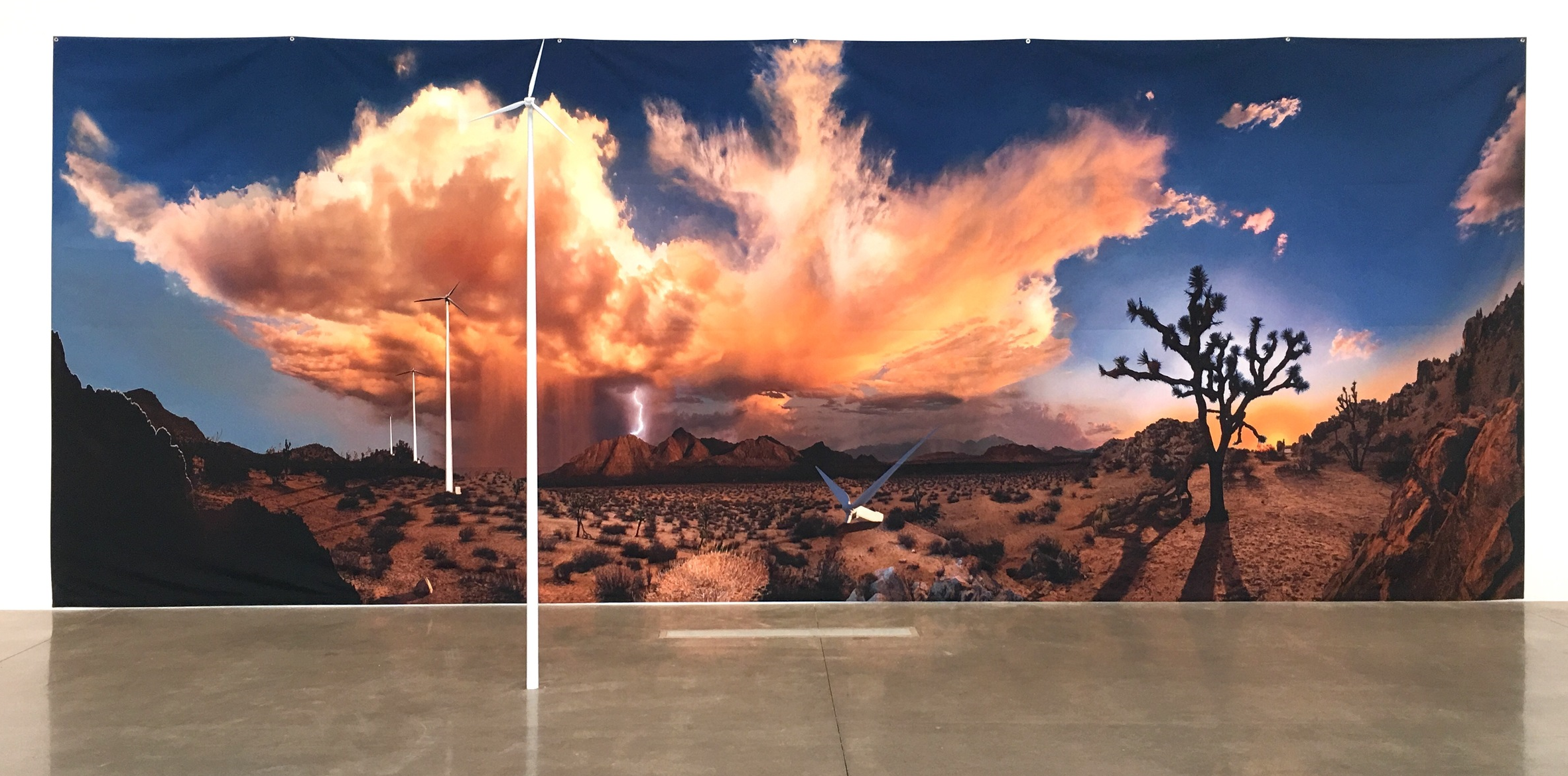 SADDLEBACK BUTTE INSTALLATION 1 (2016)       INK JET PRINT/ WOOD/ PLASTIC 10 FEET X 26 FEET