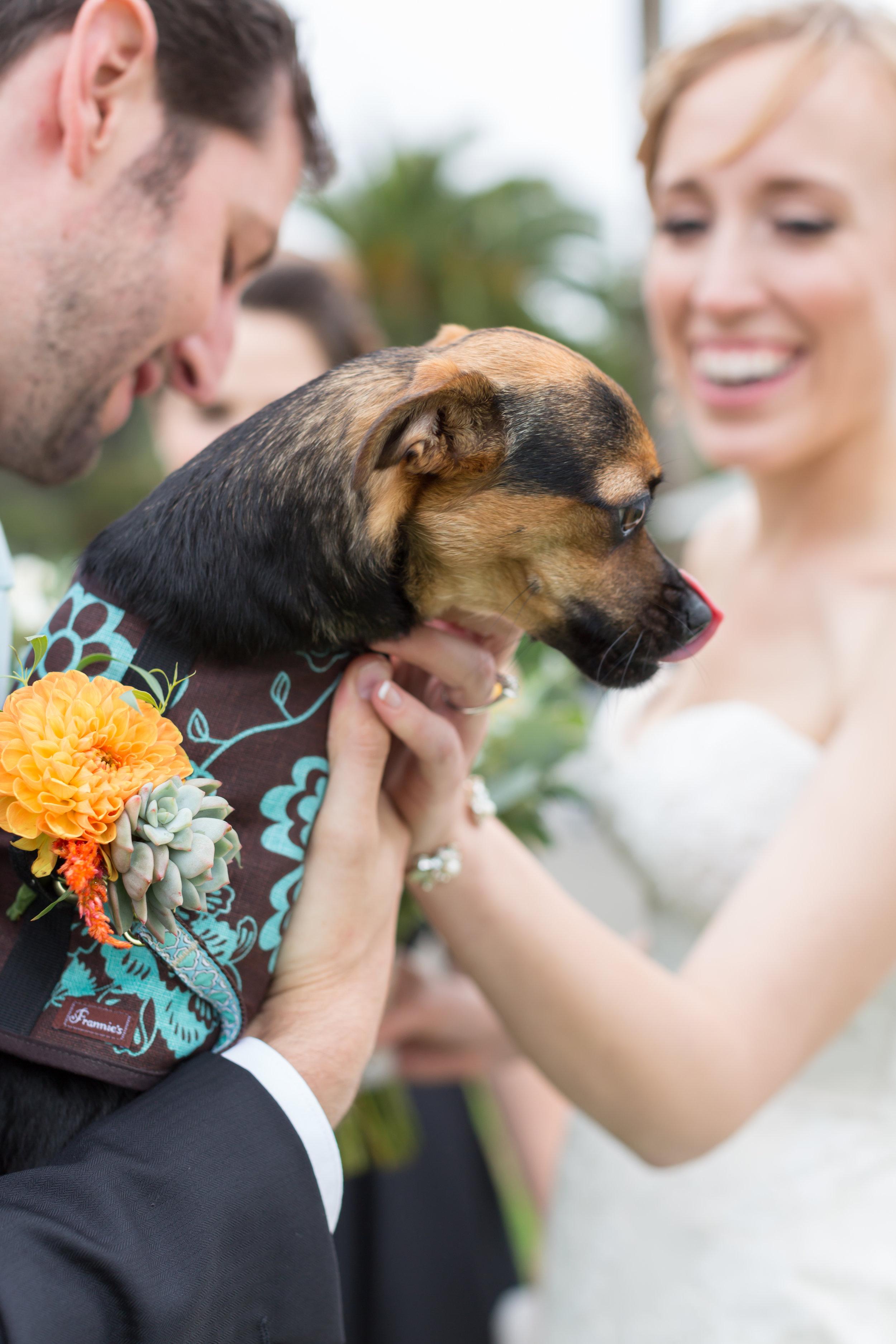 San-Francisco-Wedding-28.jpg