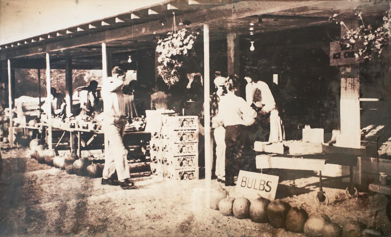 MATTICK'S FARM STAND EST. 1957