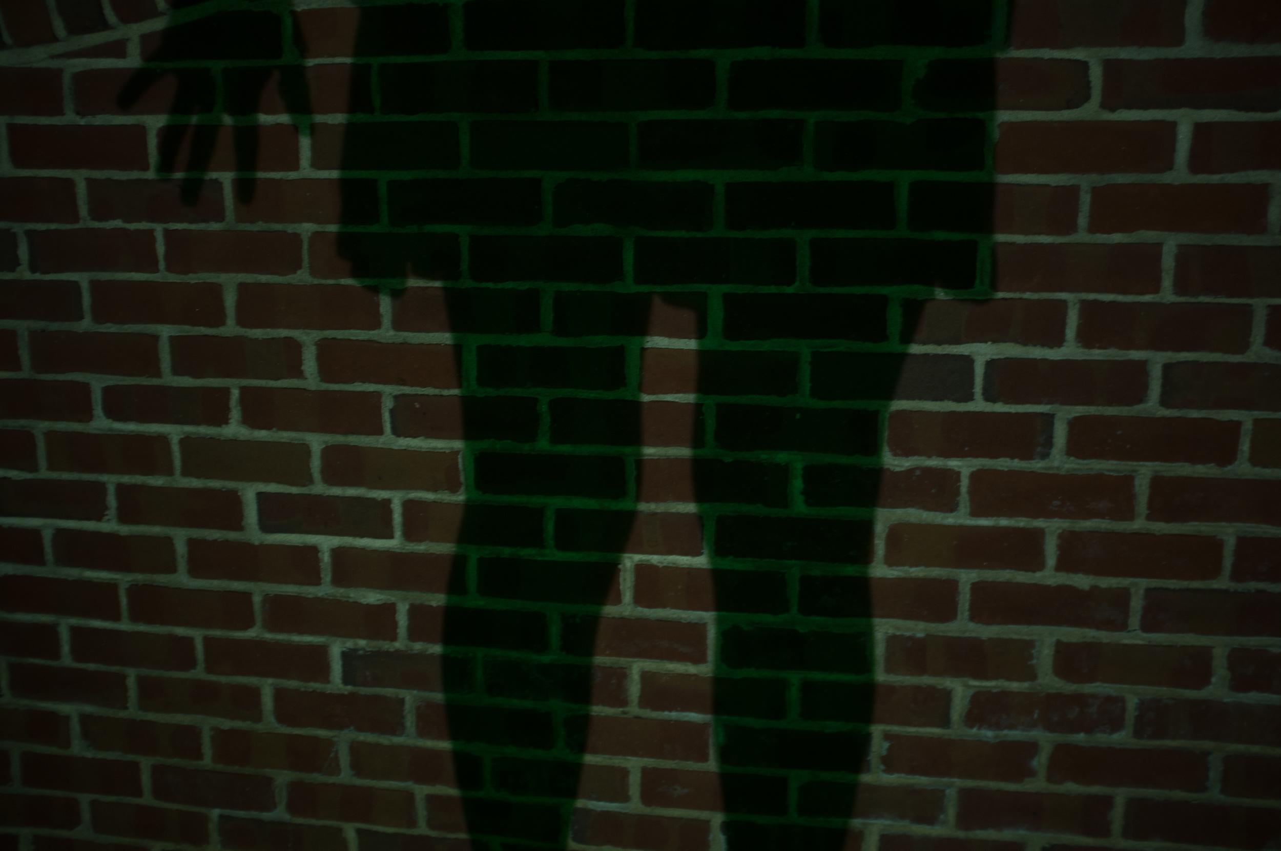 shadow   November 2014 Nashville 2014  digital capture