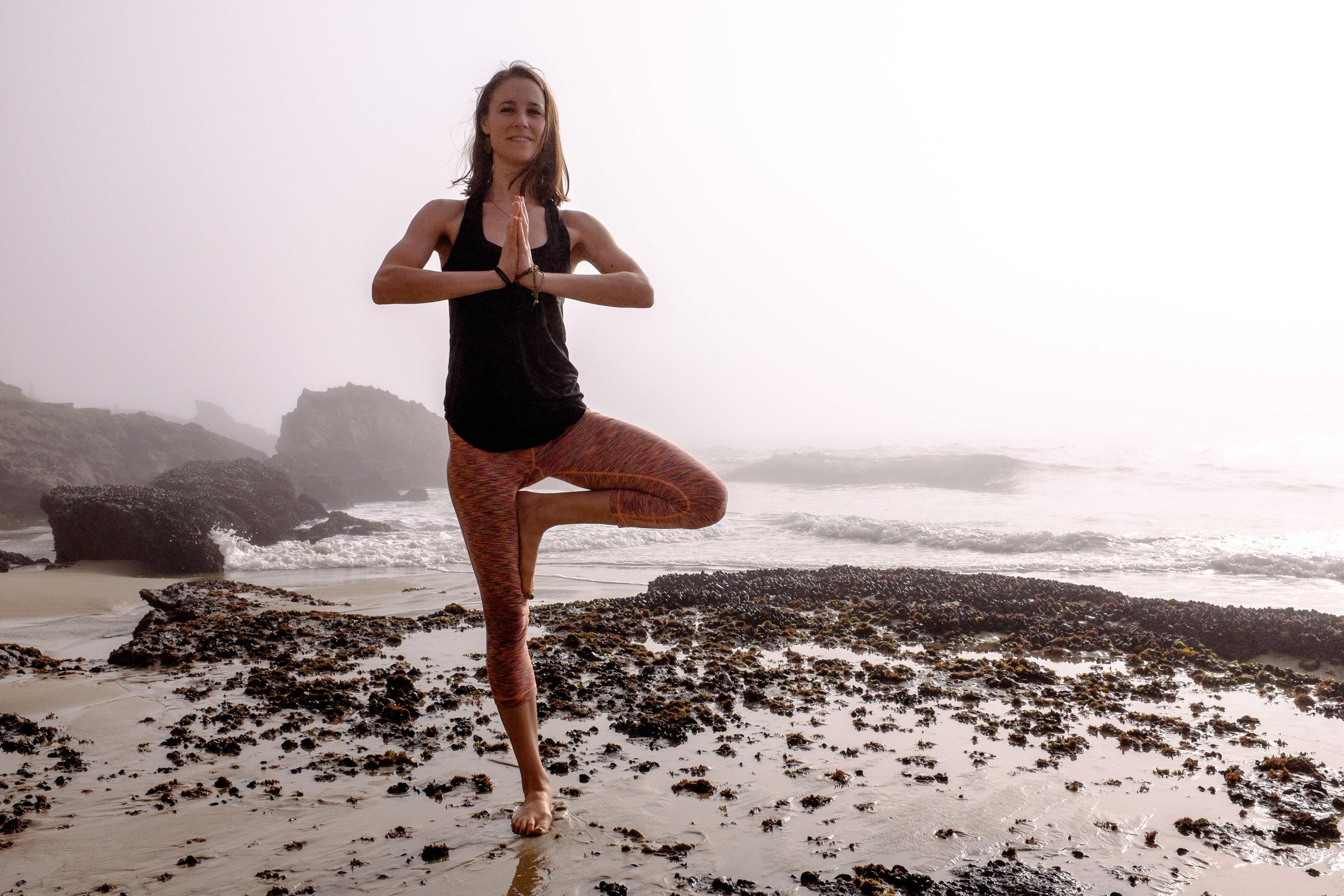 yogis-38.jpg