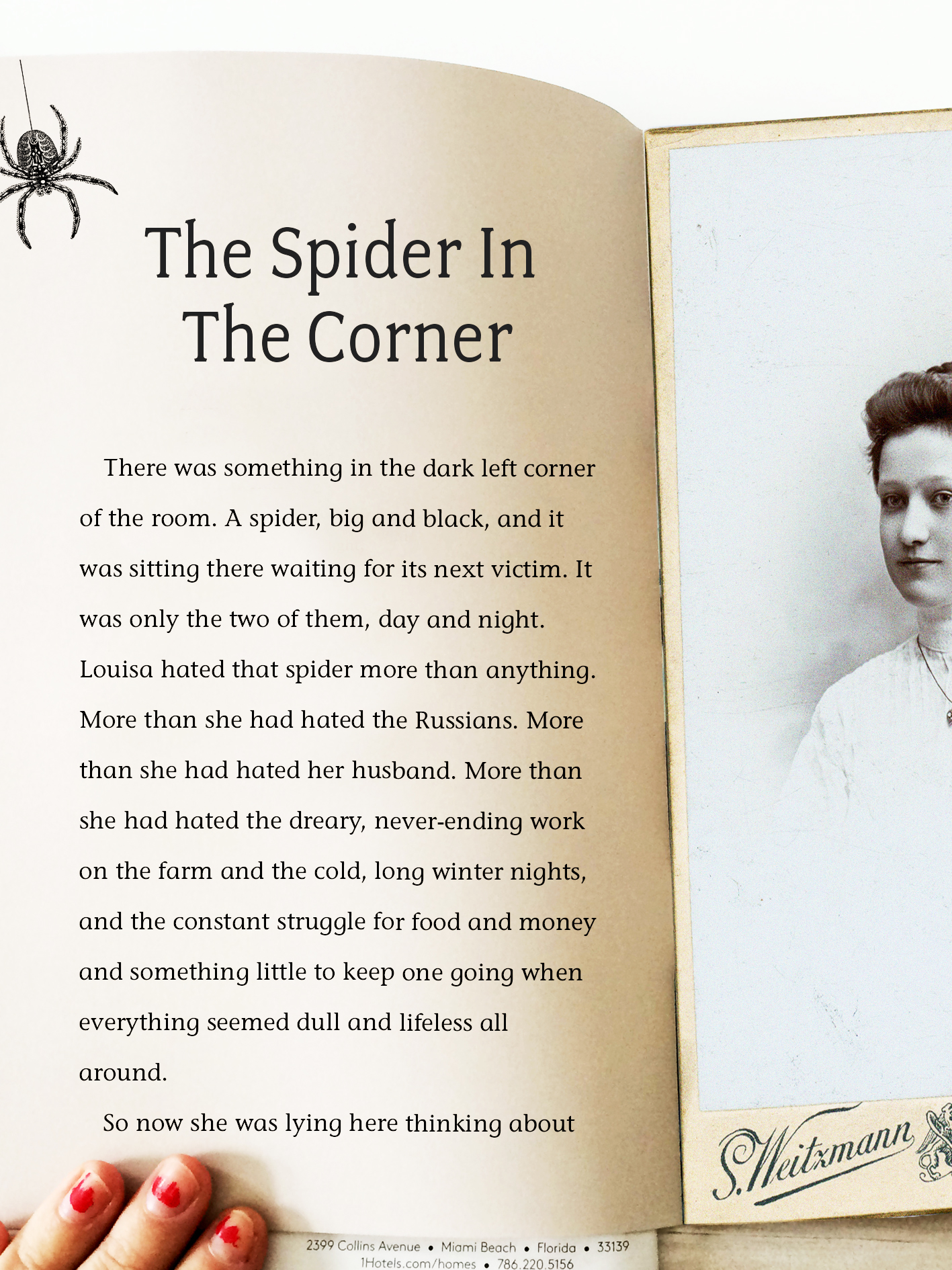 The Spider in the Corner - A dying woman changes her life after discovering a spider hiding in a corner.
