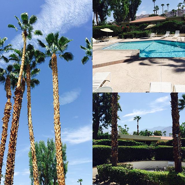 Love me som Palm Springs !!!