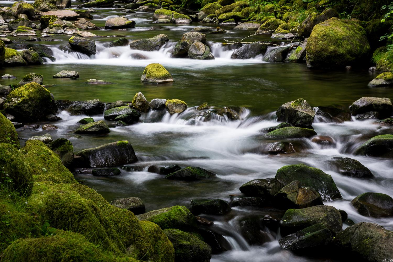 Tanner creek below Wahclella Falls, Oregon