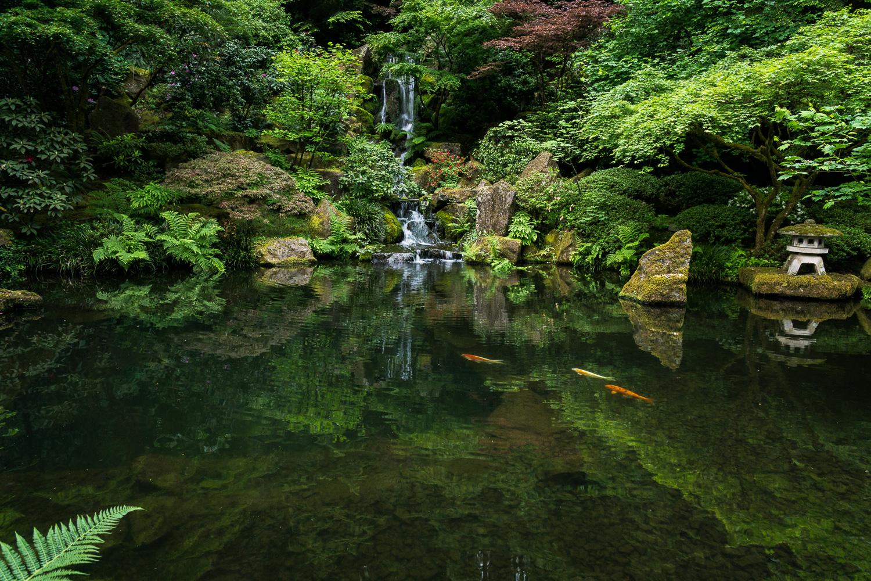 Waterfall reflection near Portland, Oregon