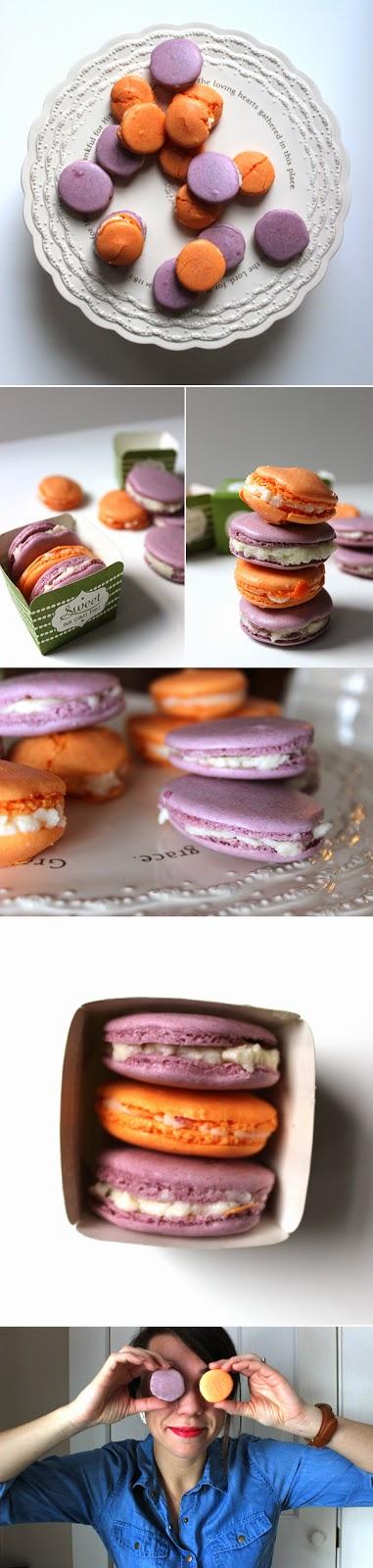 macaron-set.jpg