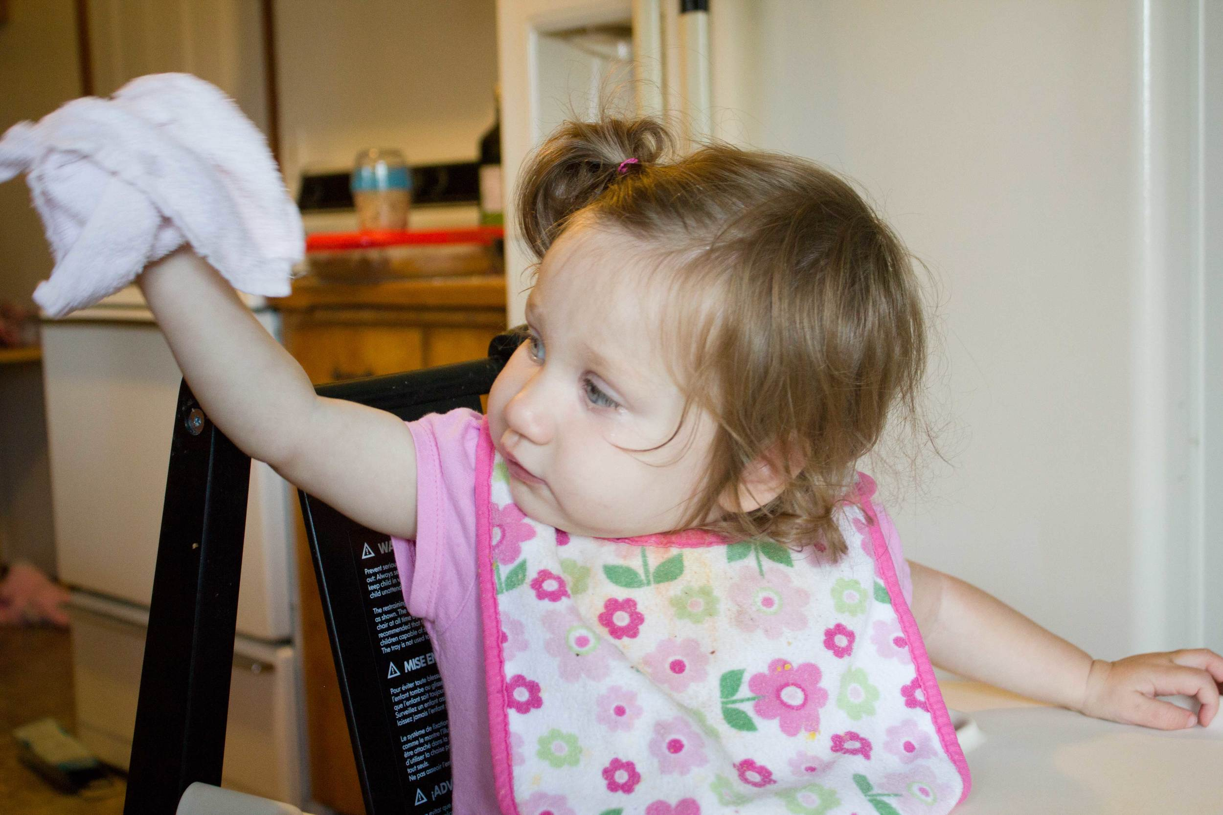 All done wiping off her tray. I didn't teach her or tell her to do it, she just saw me wiping her tray and wanted to do it herself. Simple service.