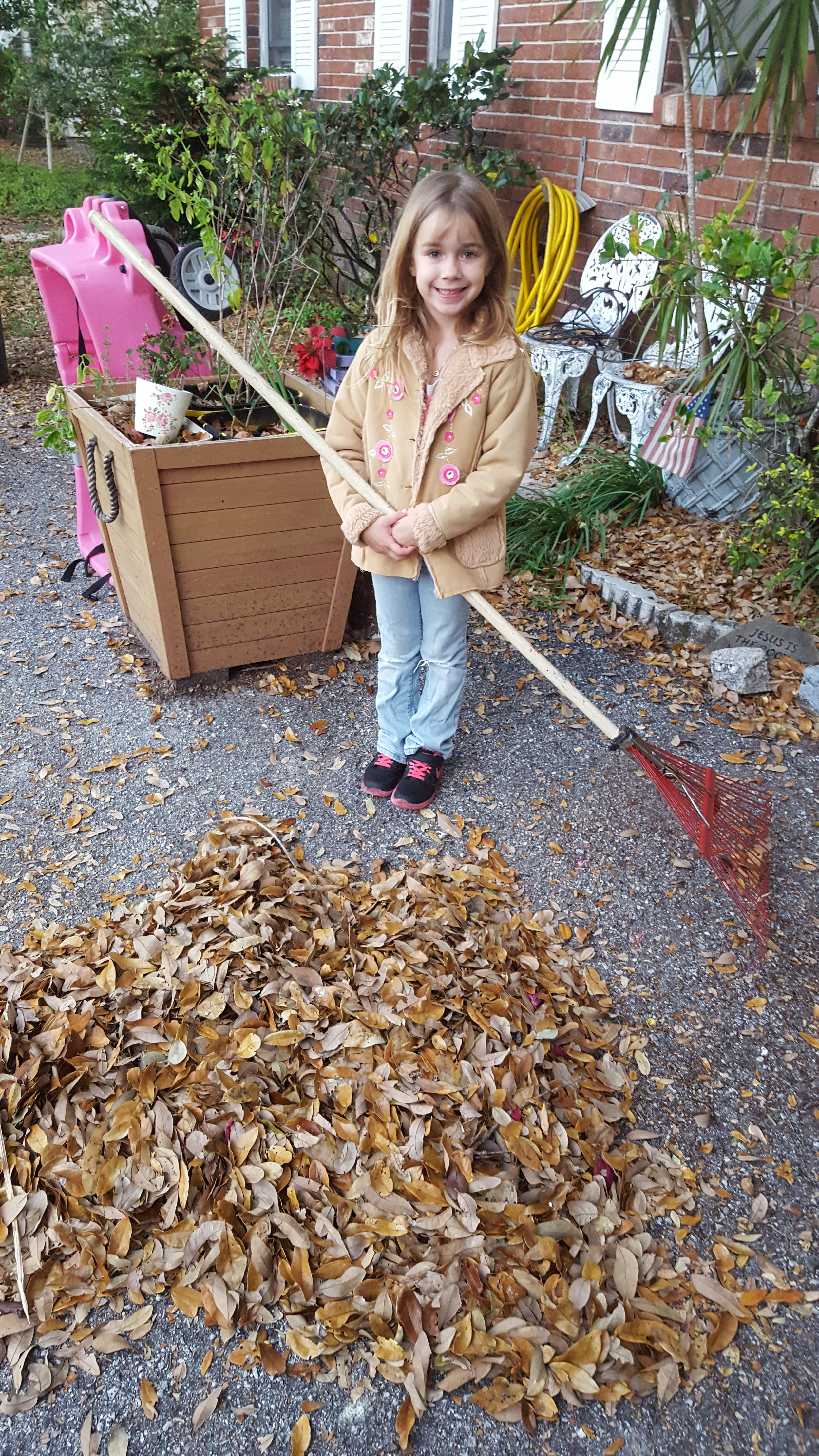 Kate (6) raking leaves. She and her sisters and a friend raked leaves in our yard to raise money for charity.