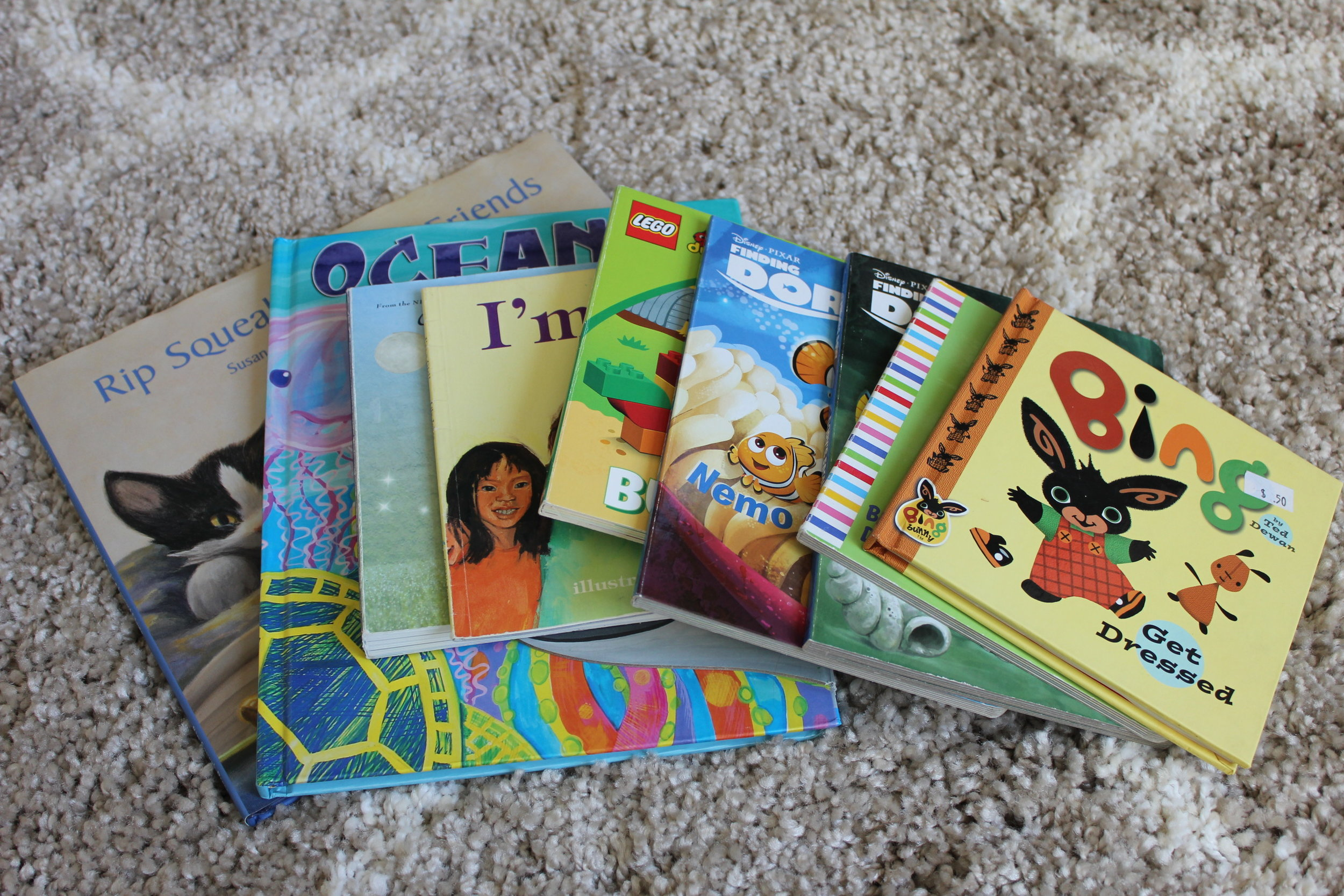 All the books that Addie selected to donate to the local library.