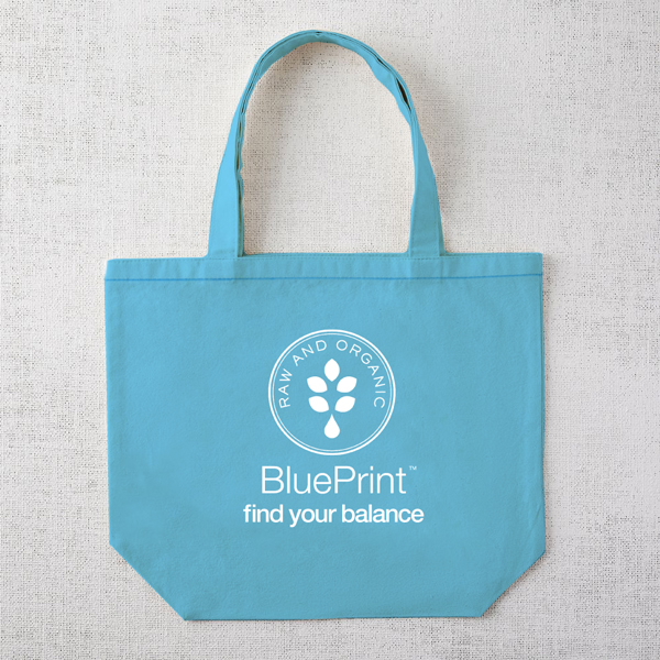 BluePrint_TOTE_blue.jpg