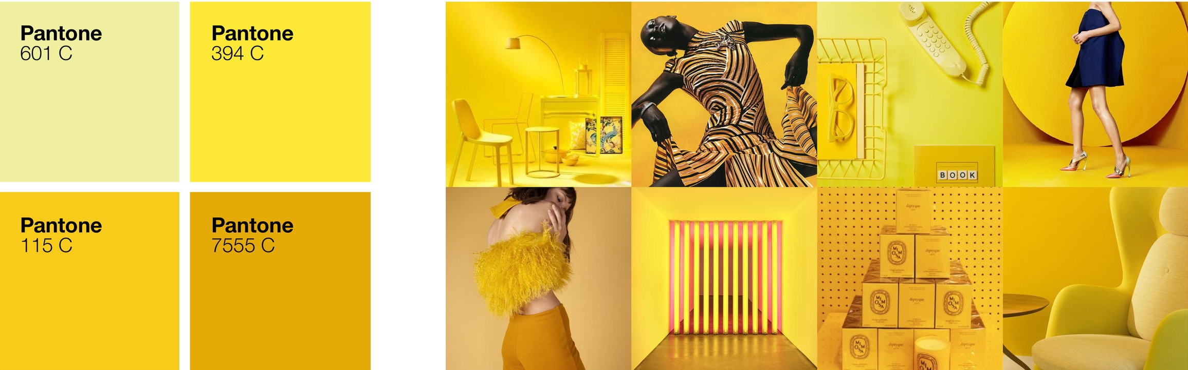 COLOR_PALETTE_YELLOW.jpg
