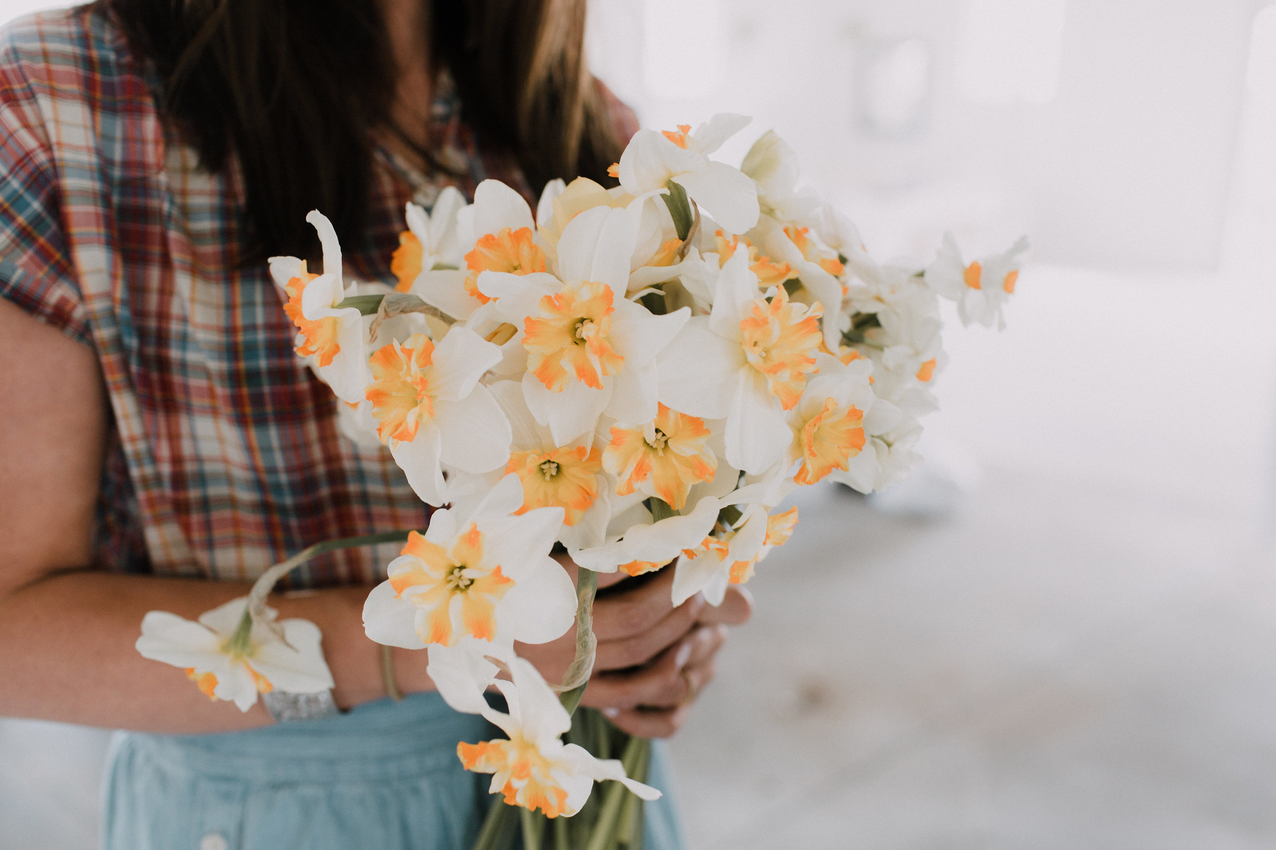 Sophie+Co daffodil Washington DC Wedding Flowers
