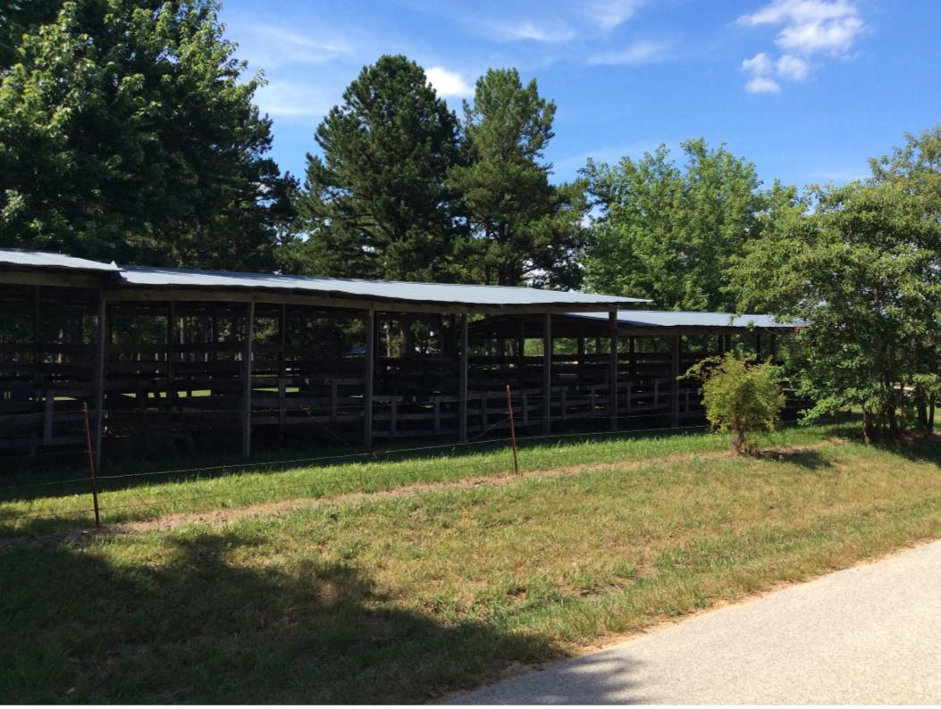 Horse farm.PNG