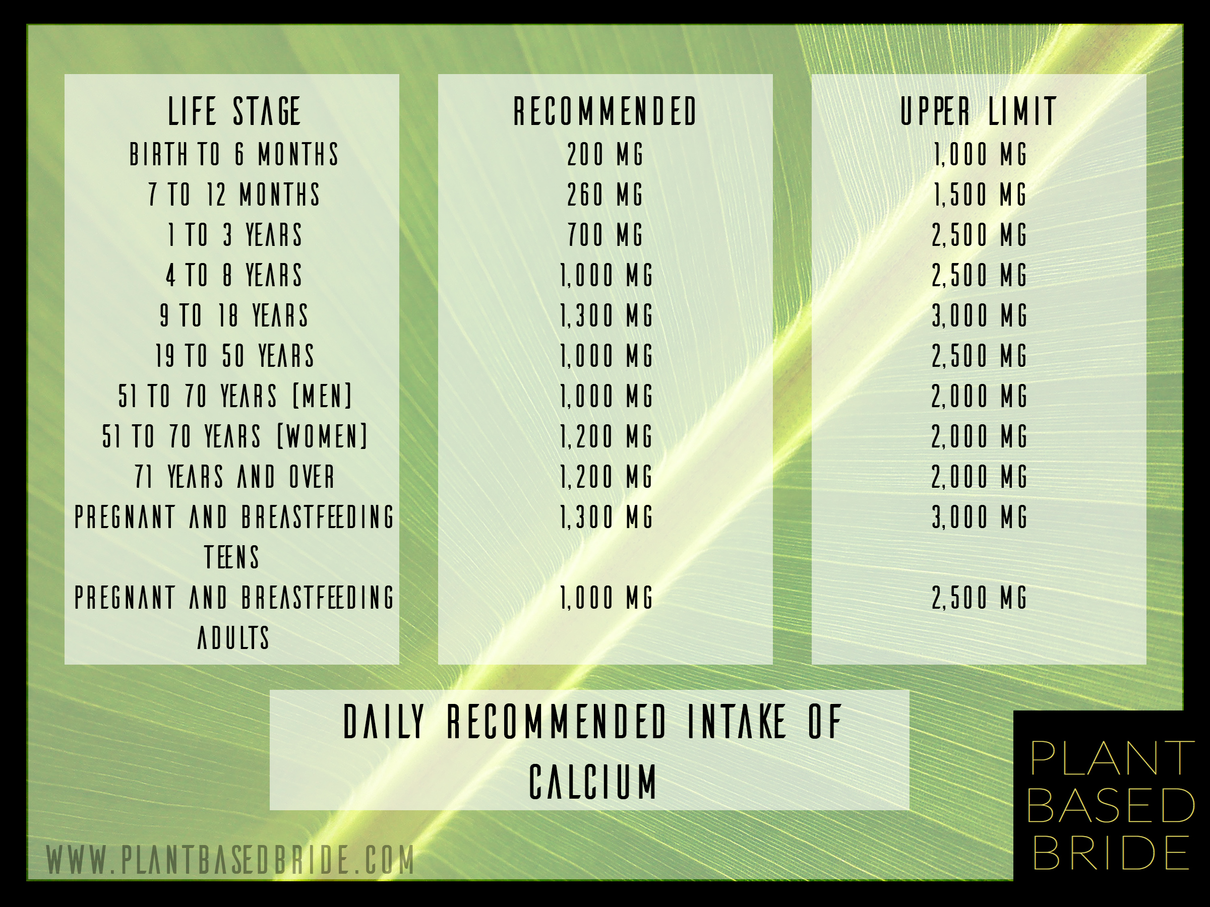 Daily Recommended Intake of Calcium from Plant Based Bride.com