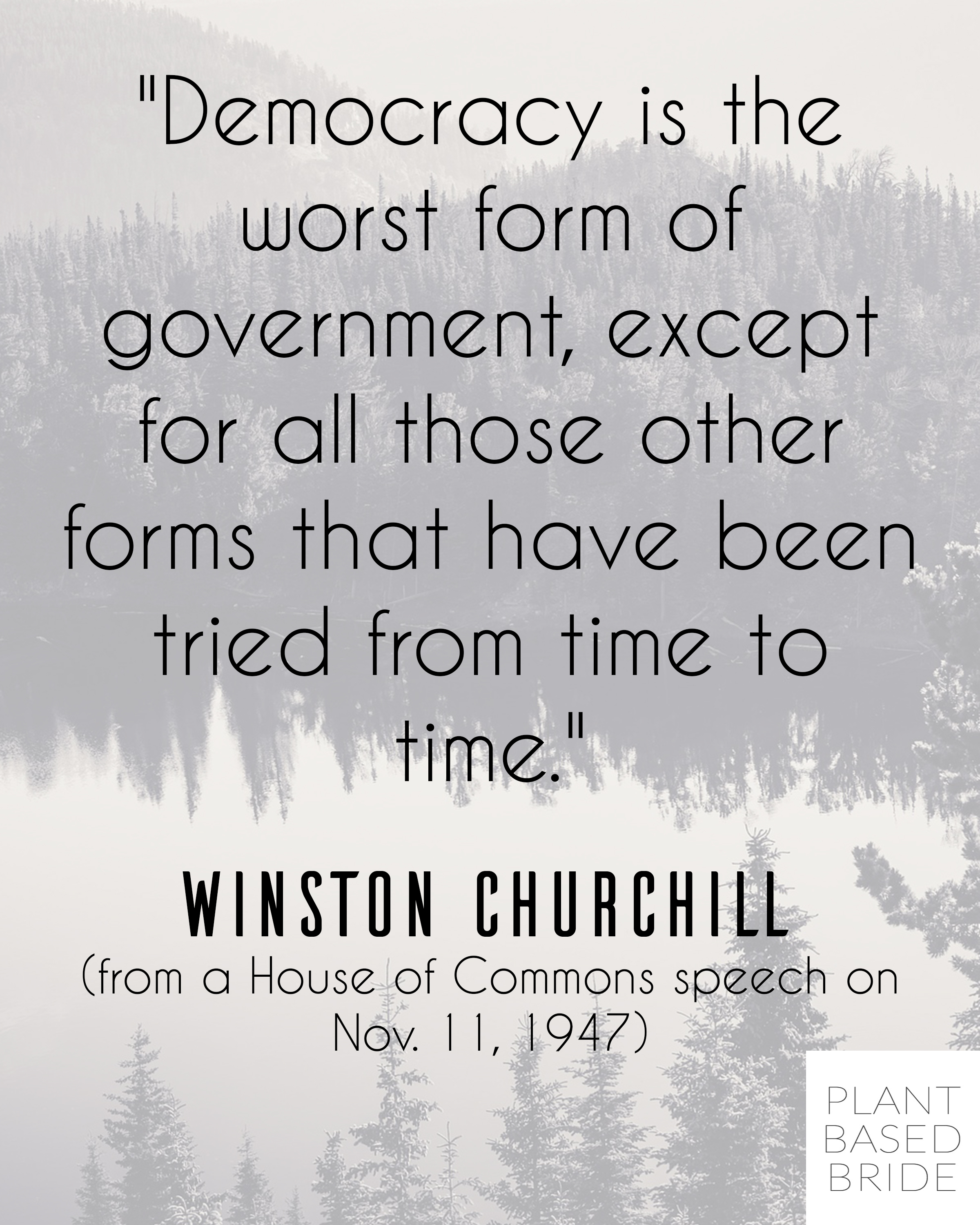 Churchill in his infinite wisdom.  Go vote today!  plantbasedbride.com