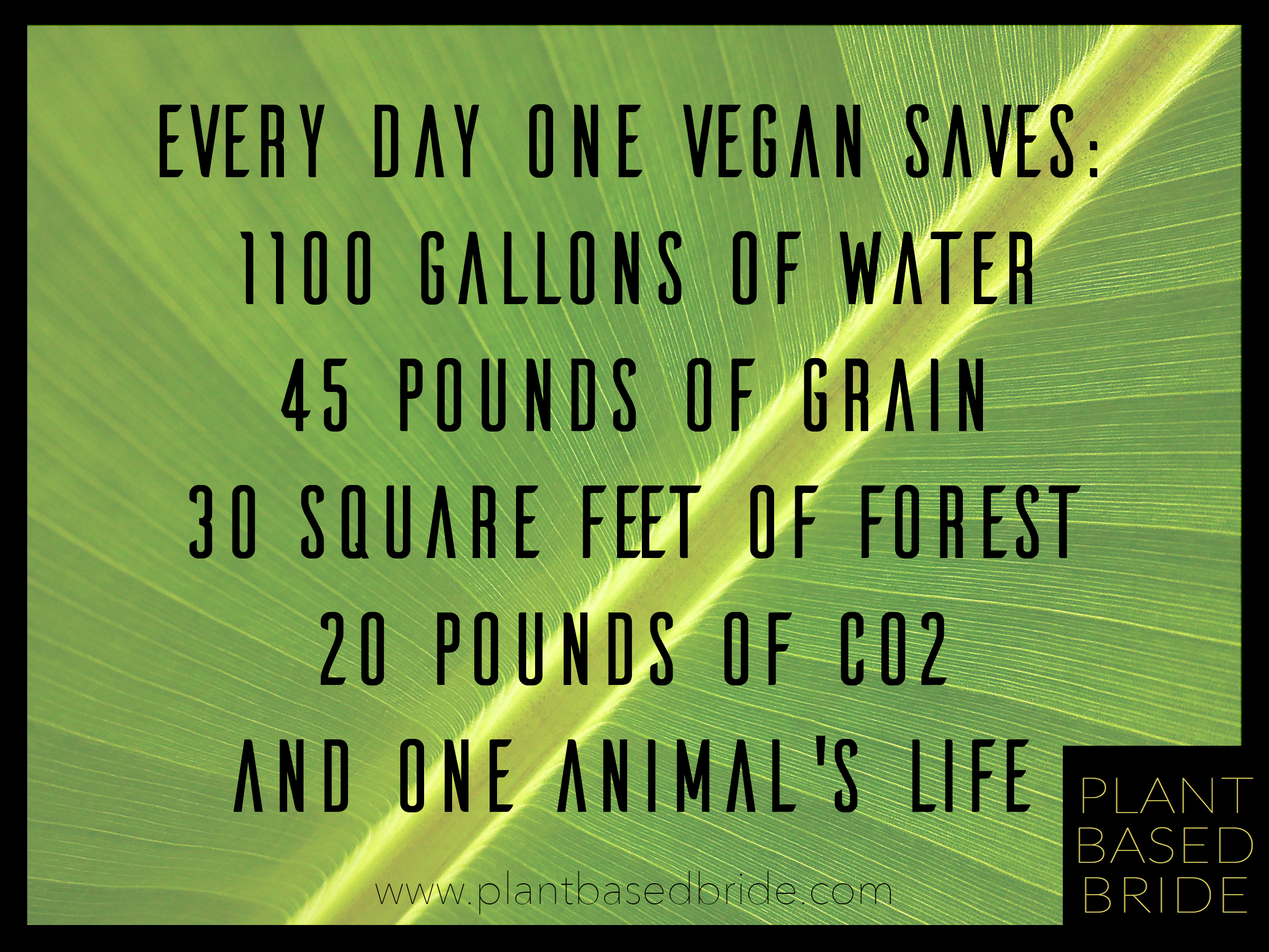 Even one vegan day makes a HUGE difference to our planet!  Go vegan!