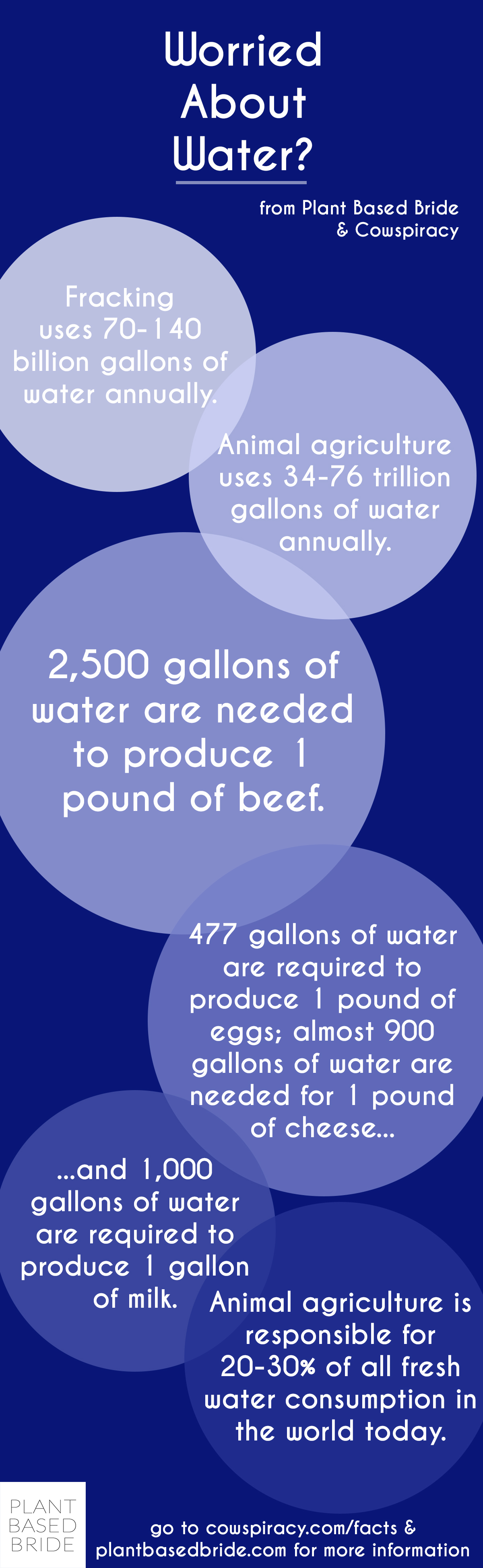 Want to save water?  Cut down on your consumption of meat and dairy products!  Facts from Cowspiracy, graphic by Plant Based Bride.