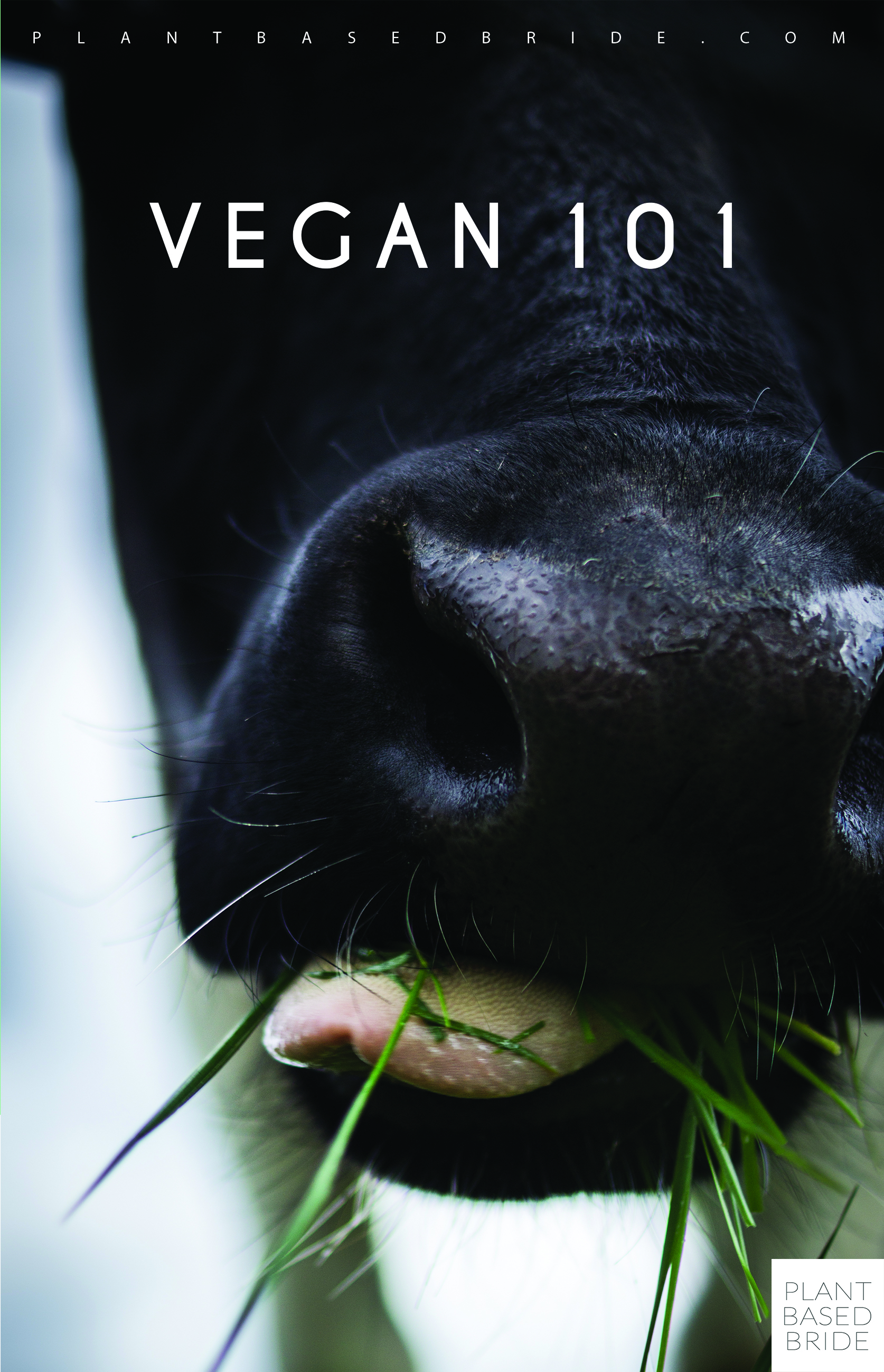 Get your FREE Vegan 101 info booklet in time for Veganuary!